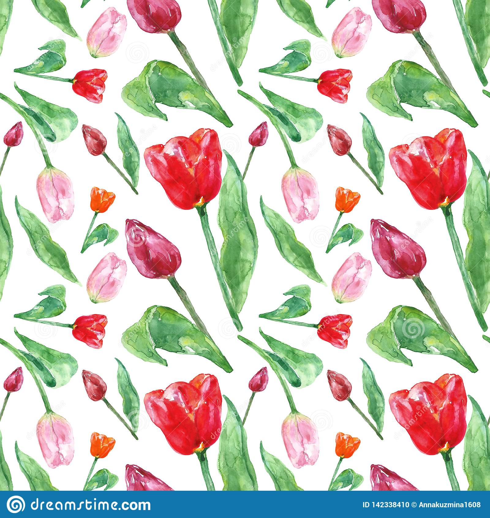 Teste padrão floral da mola da aquarela com as flores das tulipas, isoladas no fundo branco Teste padrão botânico sem emenda colo