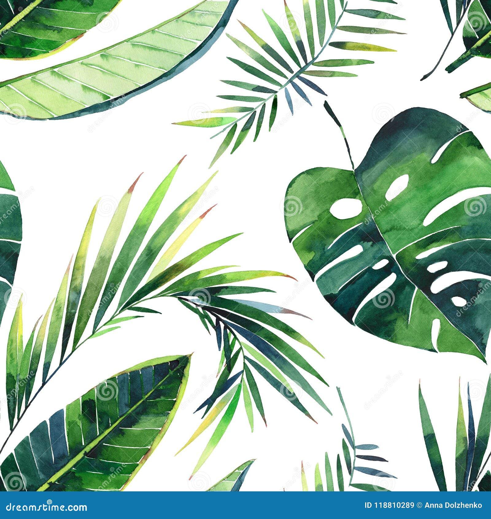 Teste padrão floral maravilhoso tropical erval verde bonito bonito brilhante do verão de Havaí de folhas de palmeira de um trópic