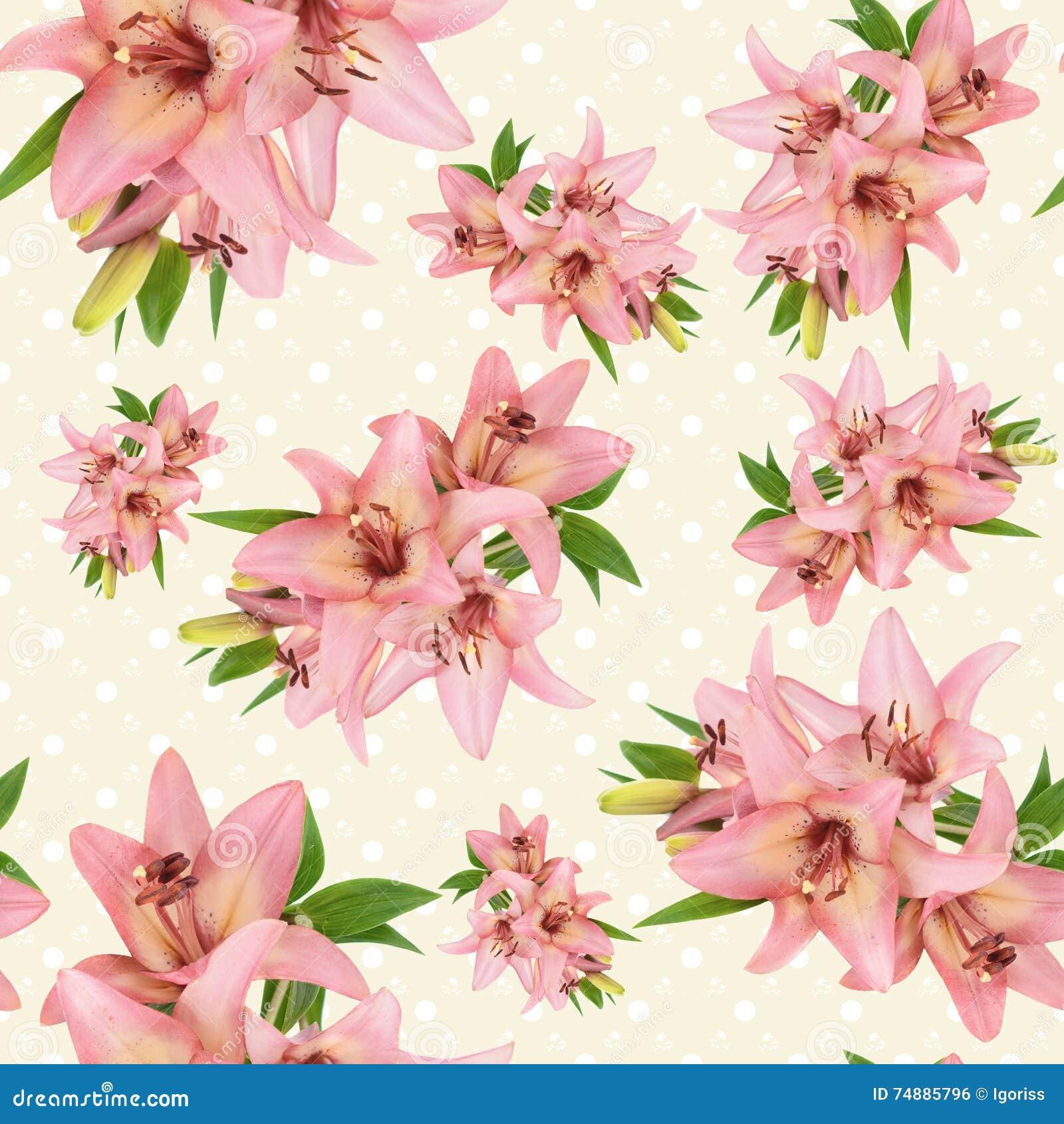 Teste padrão floral sem emenda com a flor cor-de-rosa do lírio