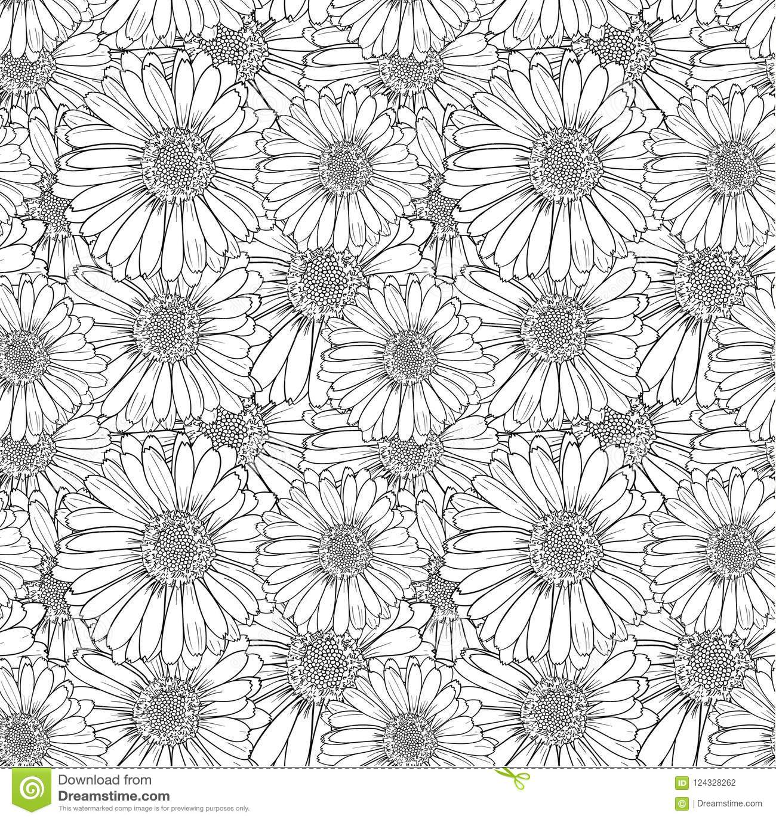 Teste padrão floral sem emenda do vetor, flores do esboço, ilustração preto e branco do esboço, fundo infinito
