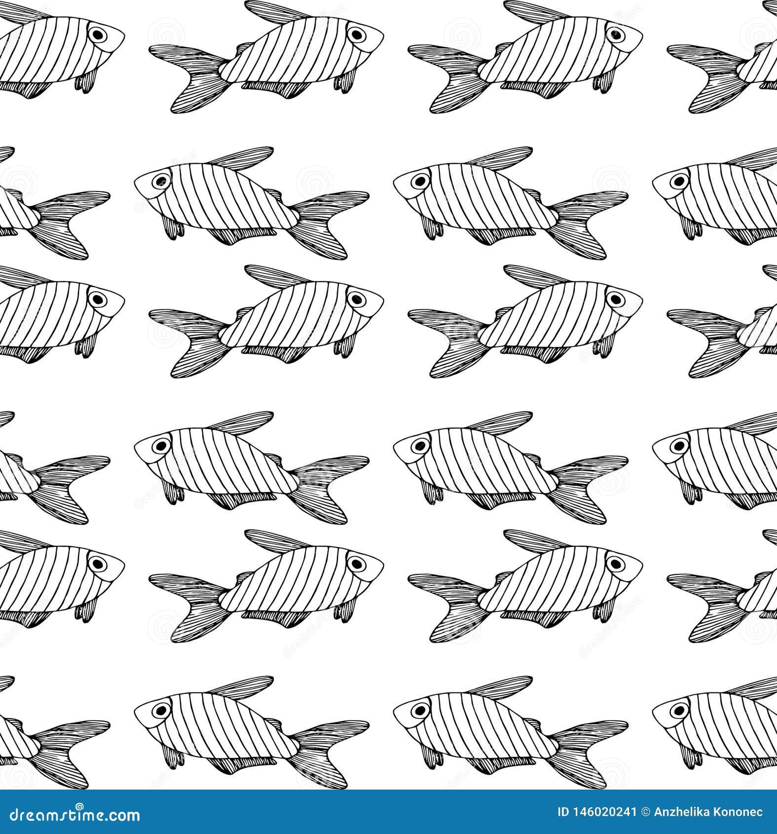 Teste padrão preto listrado dos peixes no fundo branco