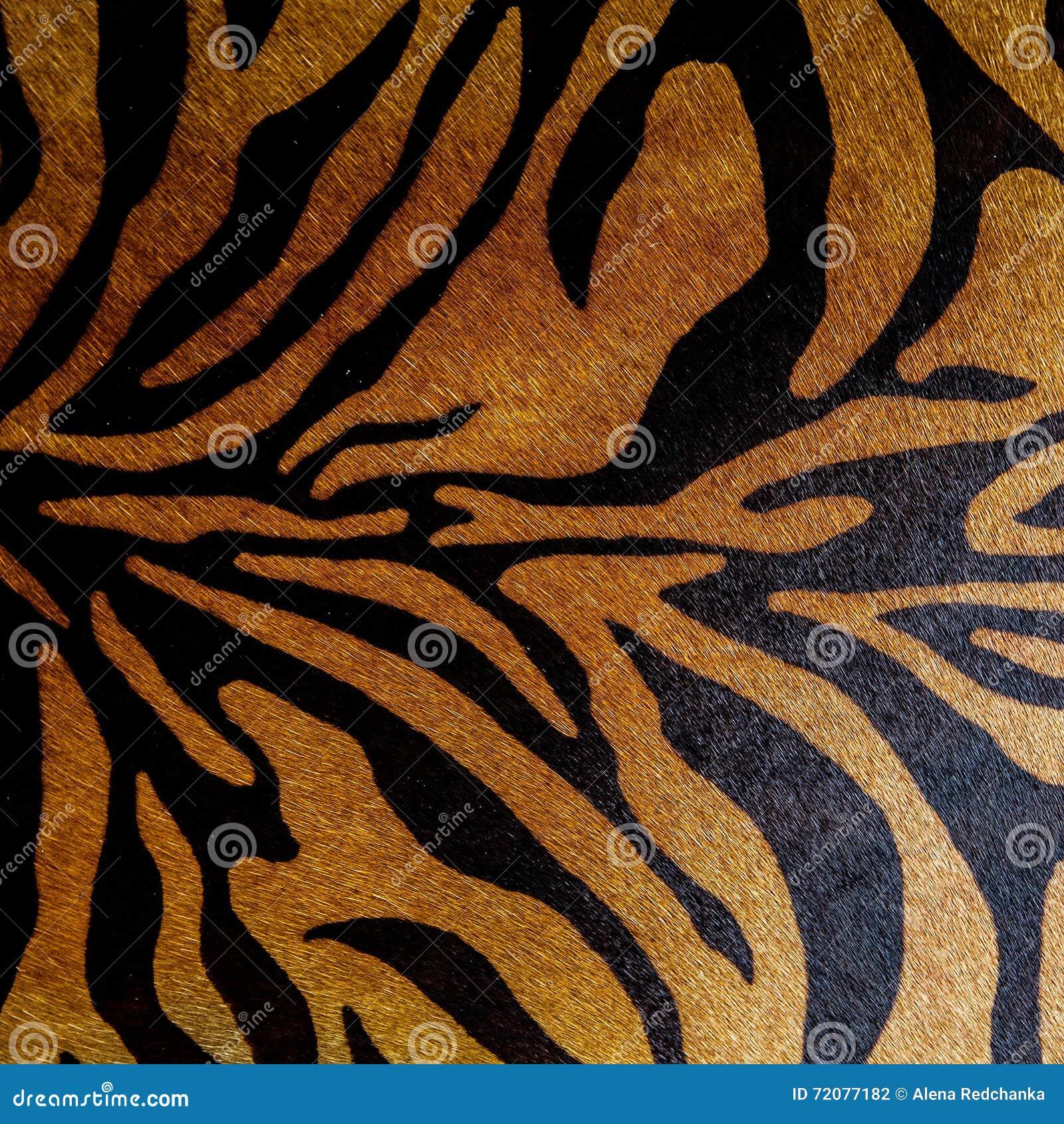 Teste padrão sem emenda animal da cópia abstrata Zebra, listras do tigre Textura de repetição listrada do fundo Projeto da tela