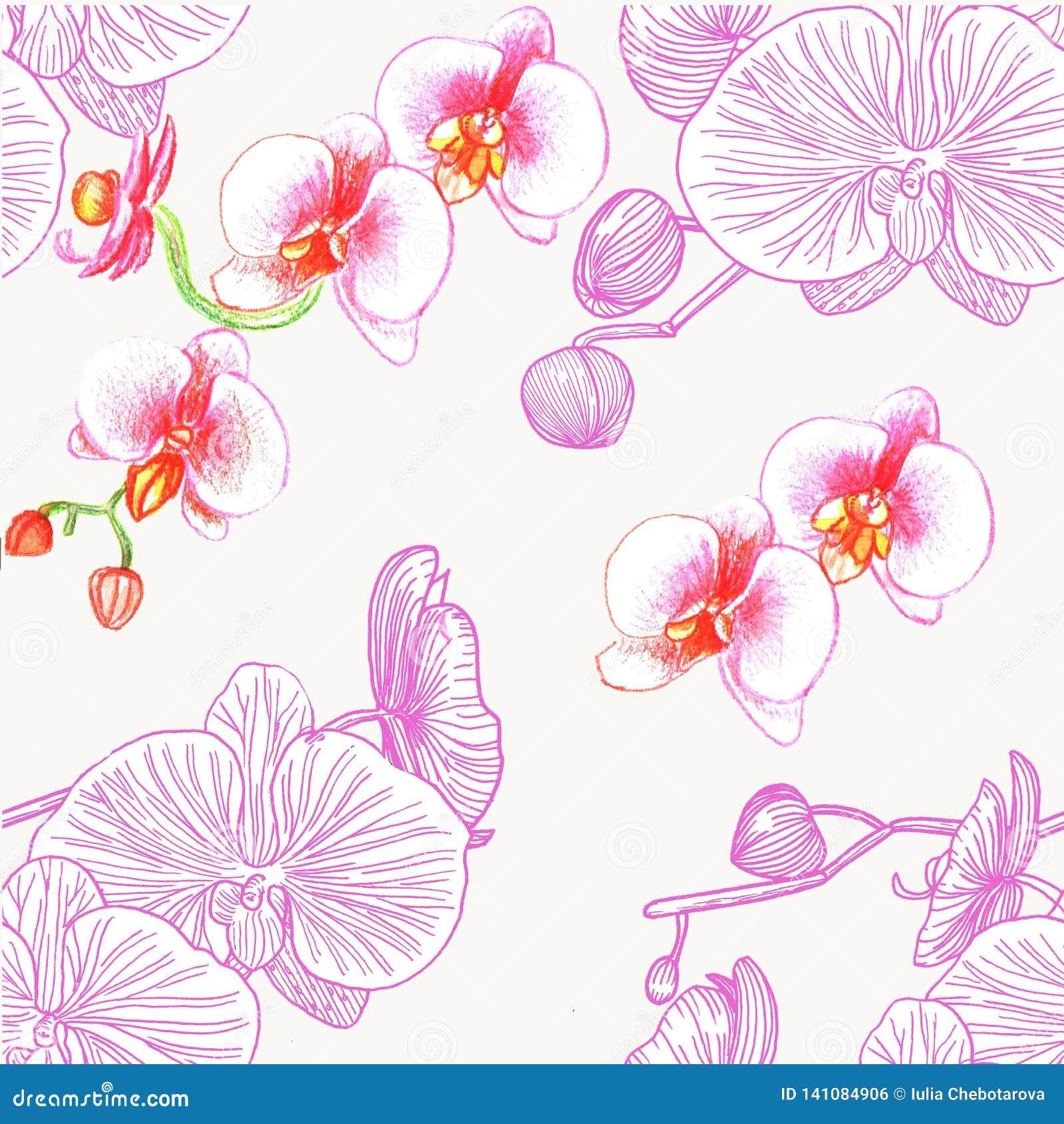Teste padrão sem emenda com orquídeas watercolor
