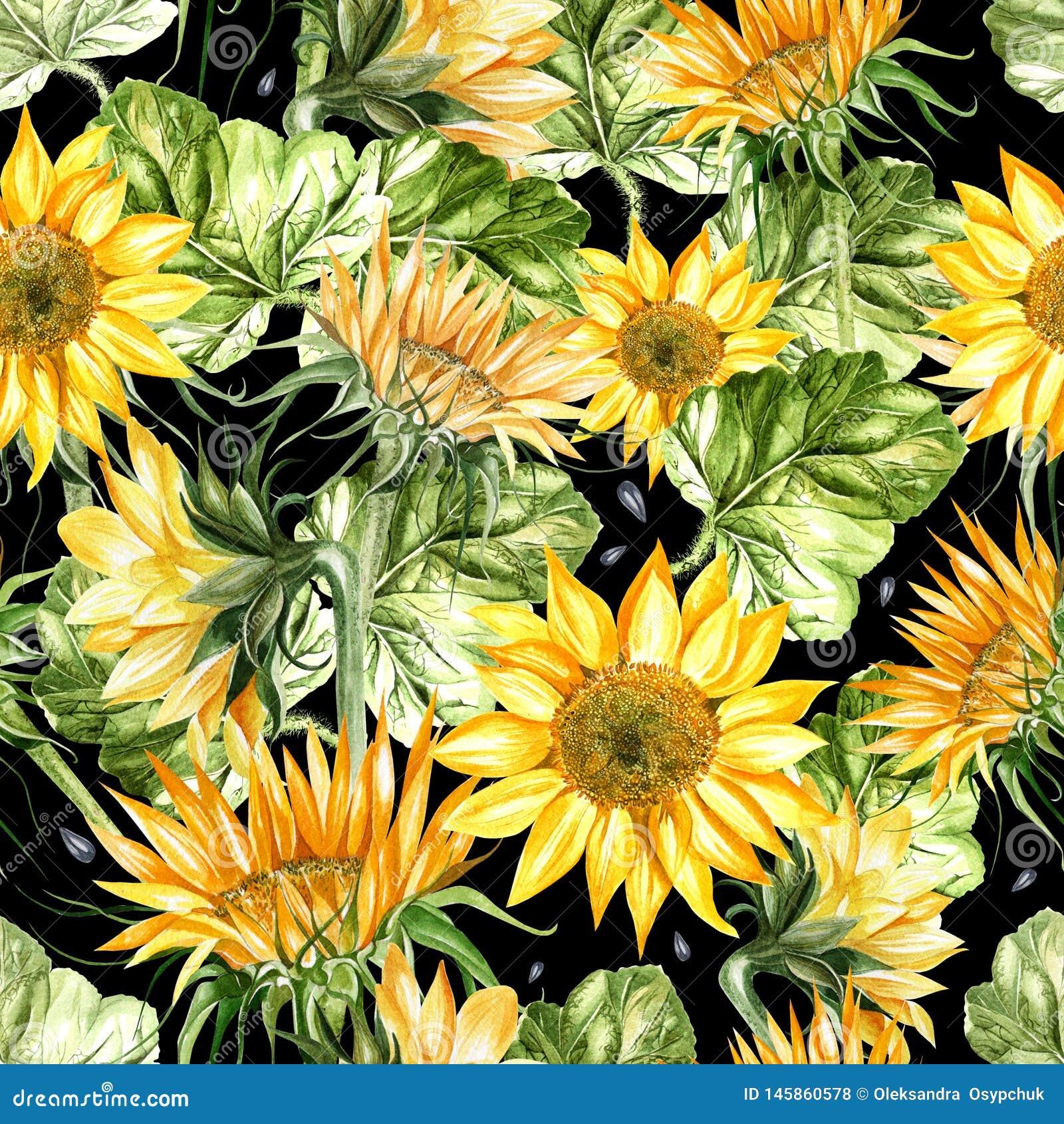 Teste padrão sem emenda da aquarela bonita com girassol e folhas