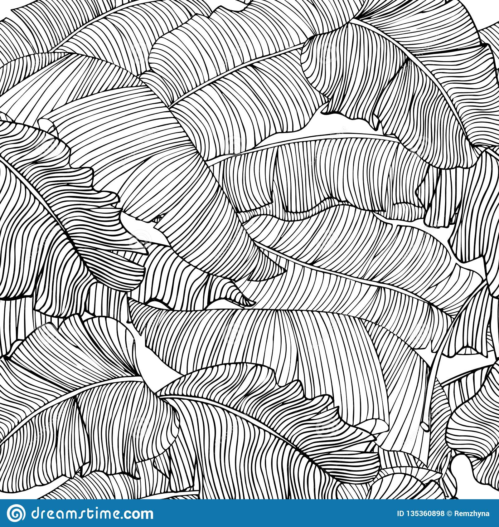 Teste padrão sem emenda das folhas exóticas, brancas da banana com esboços pretos isolados em um fundo transparente