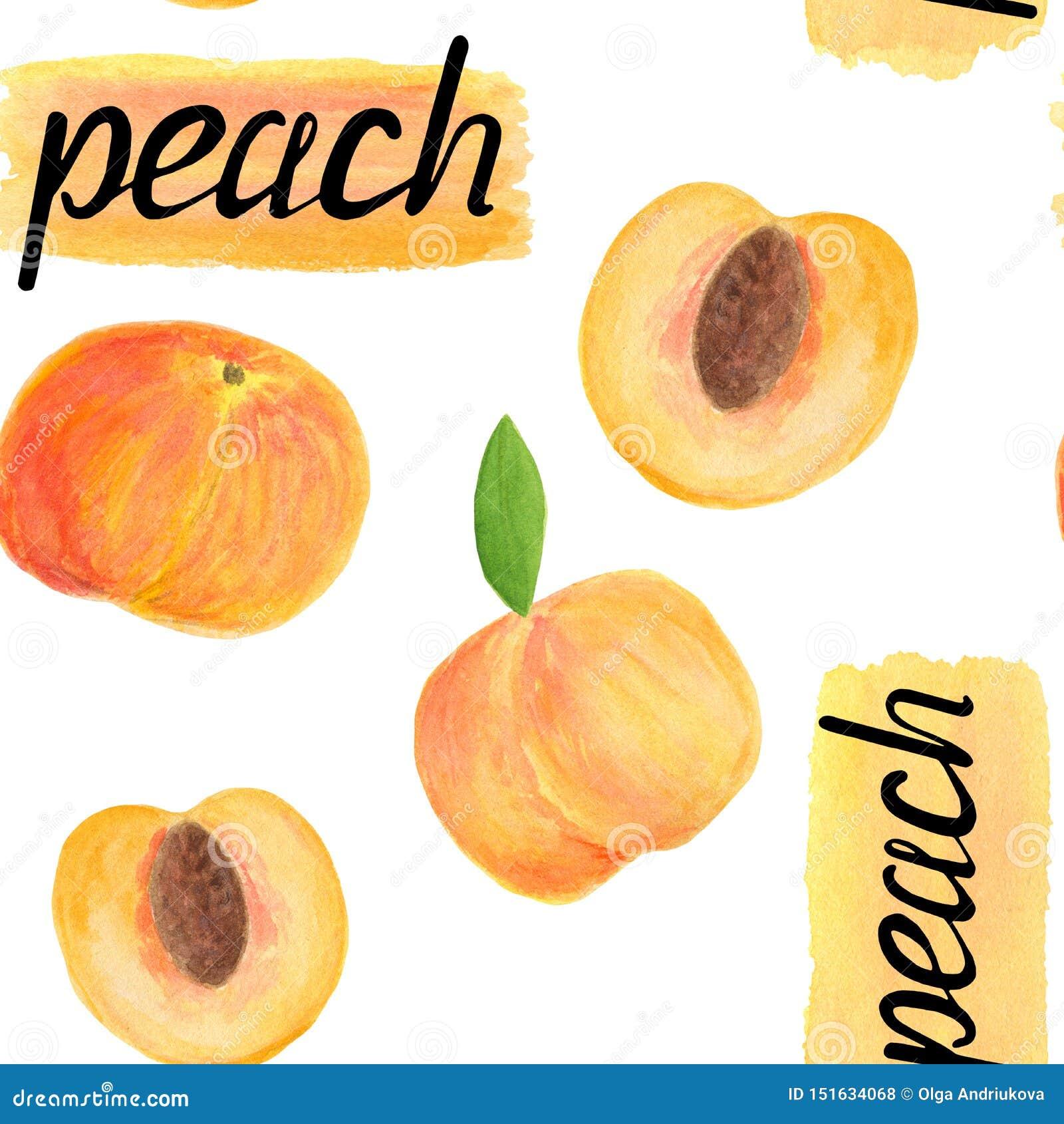Teste padrão sem emenda do fruto do pêssego da aquarela com rotulação da caligrafia