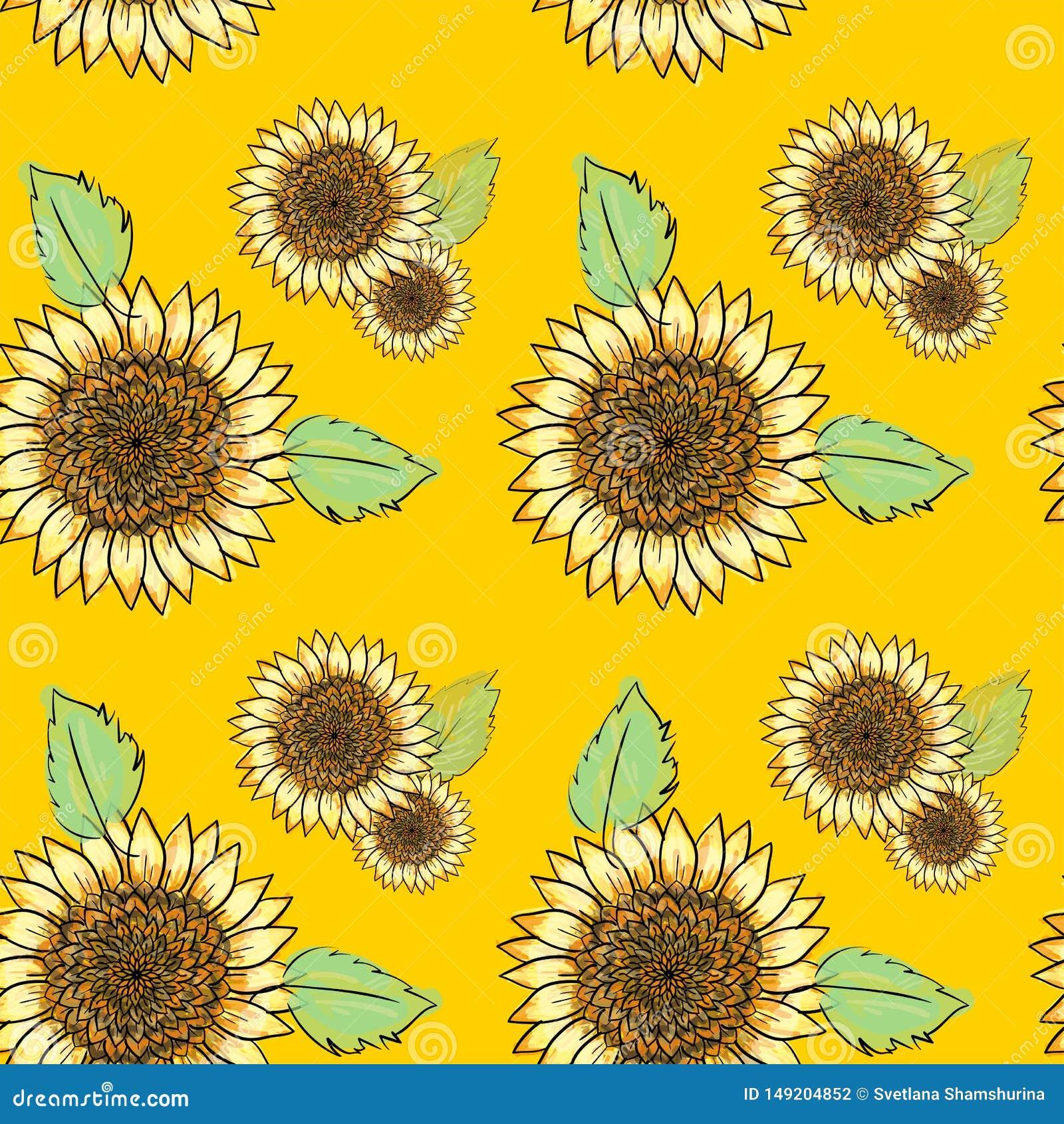 Teste padrão sem emenda do girassol com folhas verdes, imitando a tinta e a aquarela no fundo amarelo Cabeças de flor desenhados