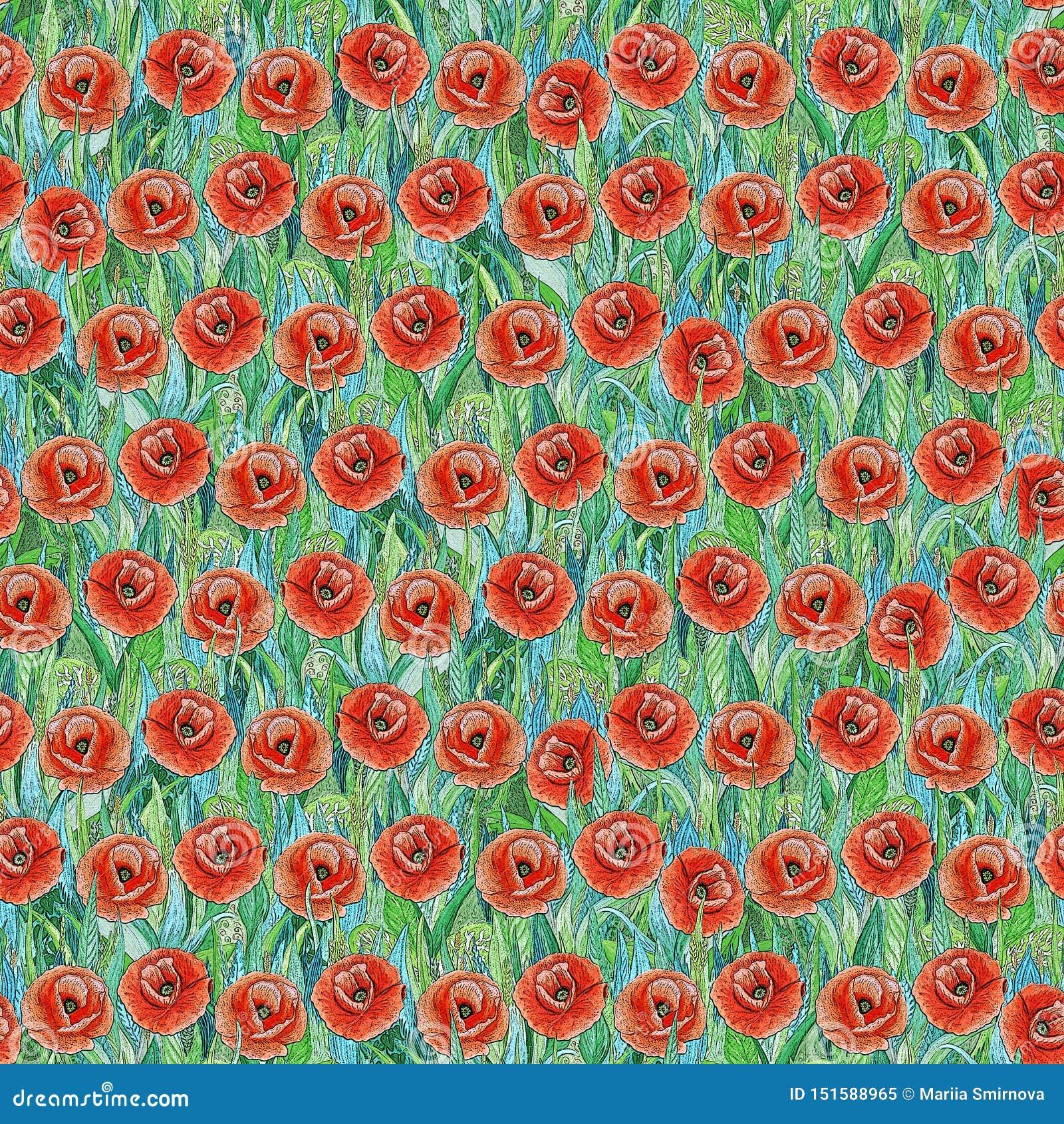 Teste padrão sem emenda do verão de papoilas vermelhas na grama Fundo colorido sob a forma de uma clareira da flor