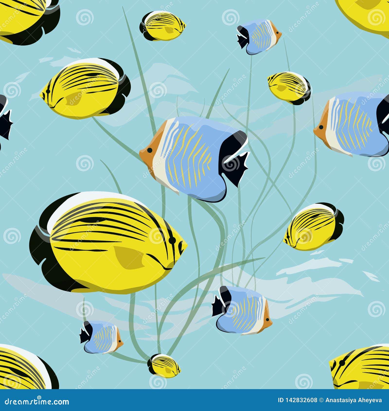 Teste padrão sem emenda Mundo subaquático realístico Peixes e algas tropicais brilhantes