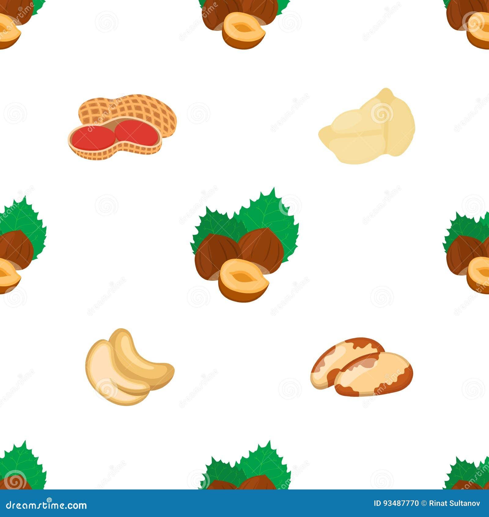 Teste padrão sem emenda nuts diferente Amendoim, noz do Brasil, caju, avelã, grão-de-bico