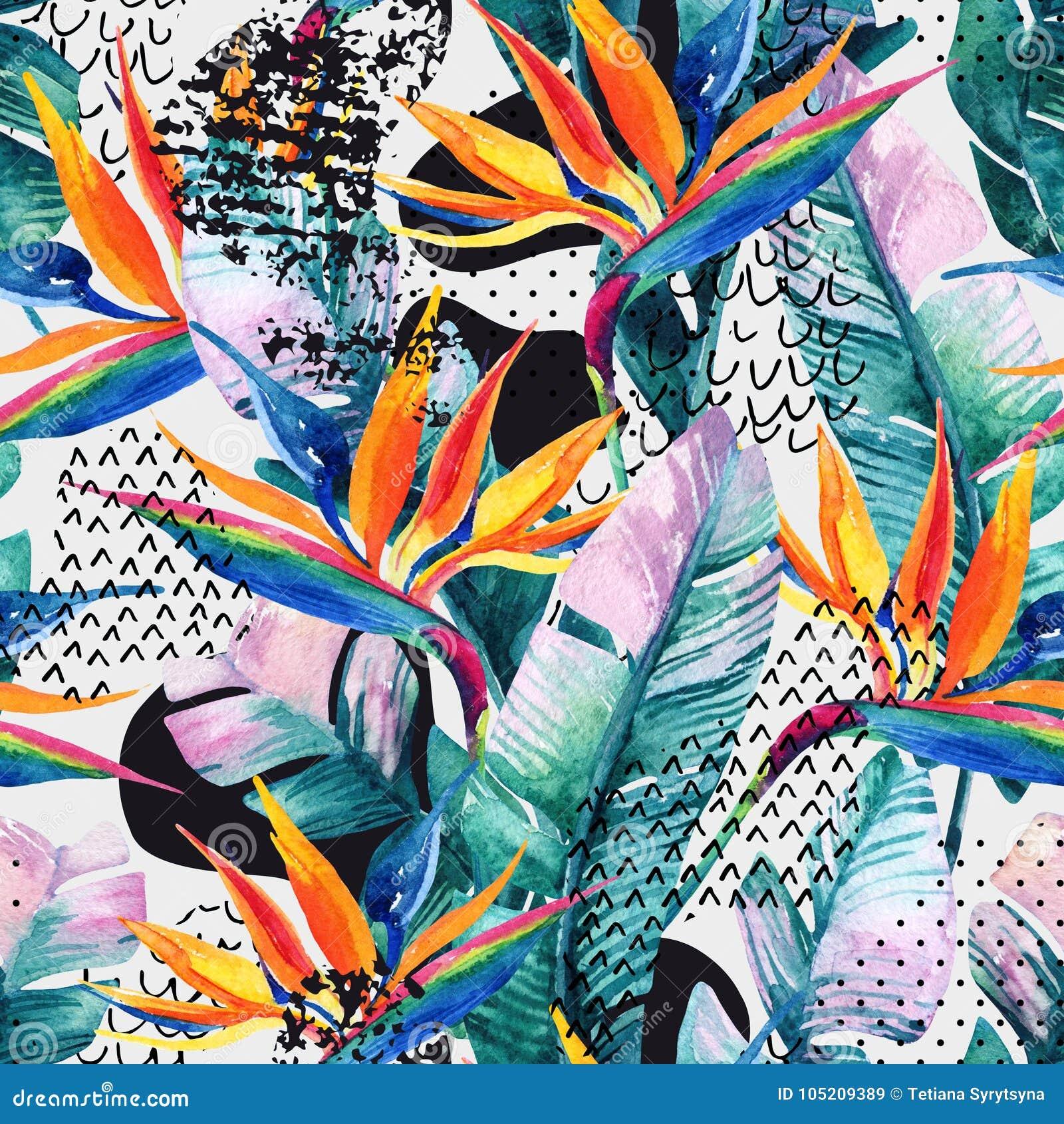 Teste padrão sem emenda tropical da aquarela com flor do pássaro--paraíso As flores exóticas, folhas, forma lisa da curvatura enc
