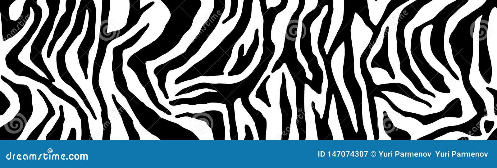 Teste padr?o da zebra, textura ? moda das listras C?pia natural animal Para o projeto do papel de parede, mat?ria t?xtil, tampa B