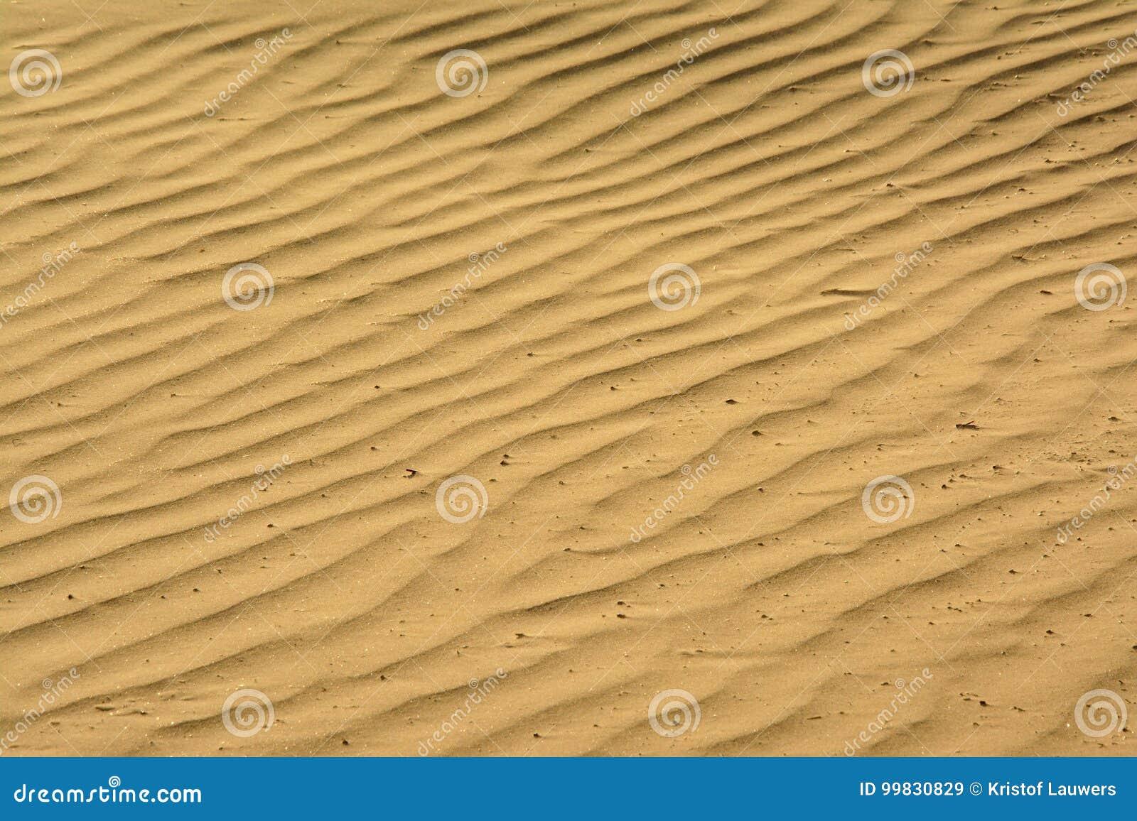 Testes padrões ondulados da areia na praia