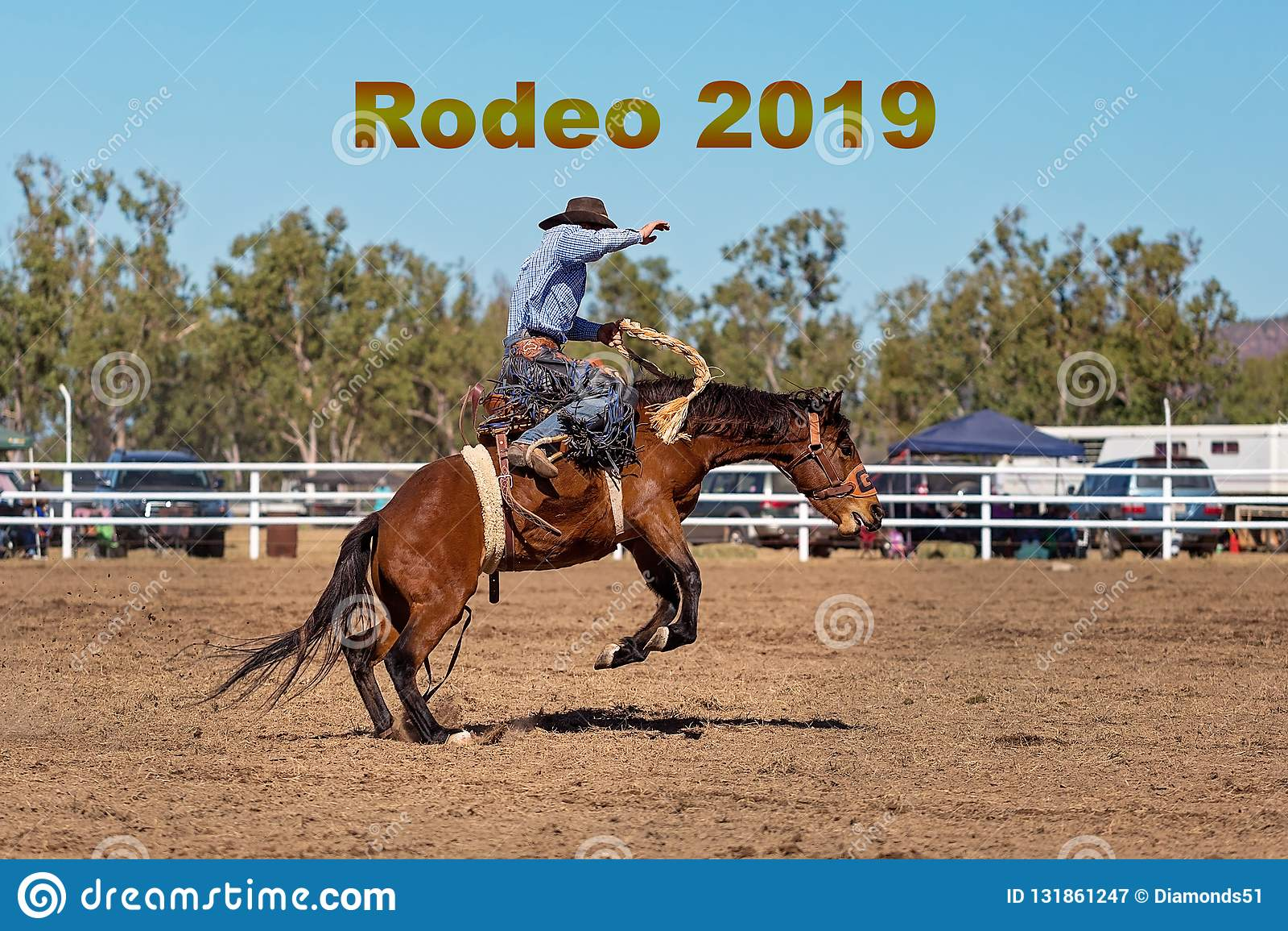Rodeo A Cavallo.Testo Del Rodeo 2019 Cavallo Di Bronc Di Urtare Di Riding