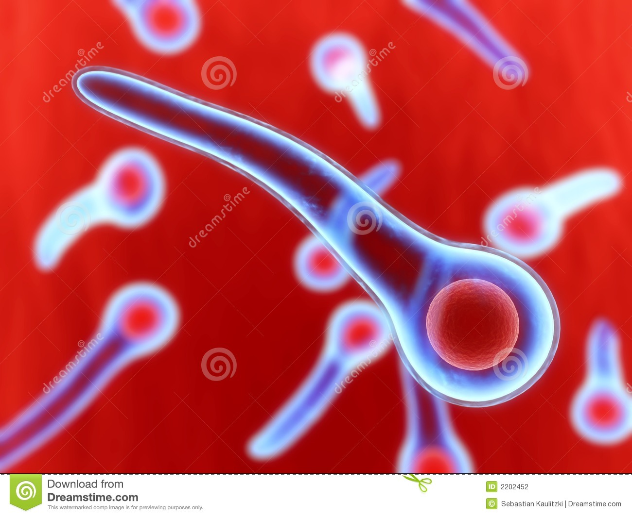 Tetanus Bacteria Stock Photography - Image: 2202452