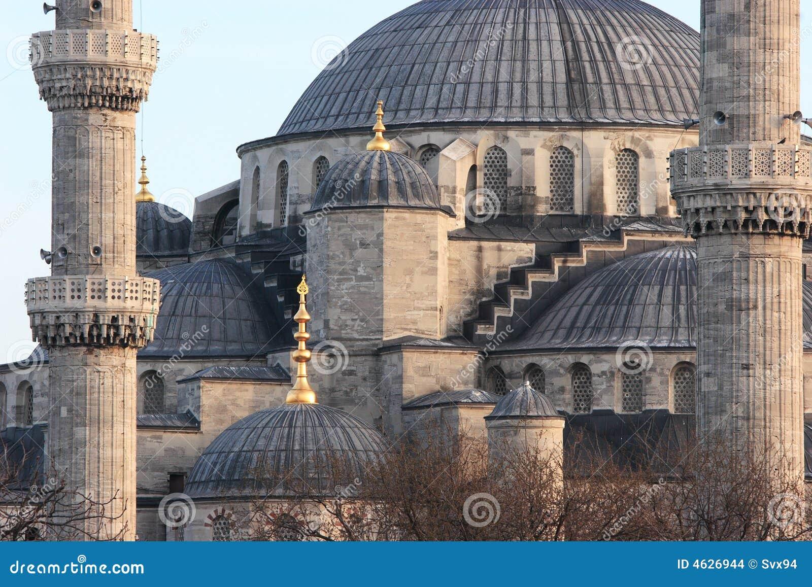 Tetto della moschea blu