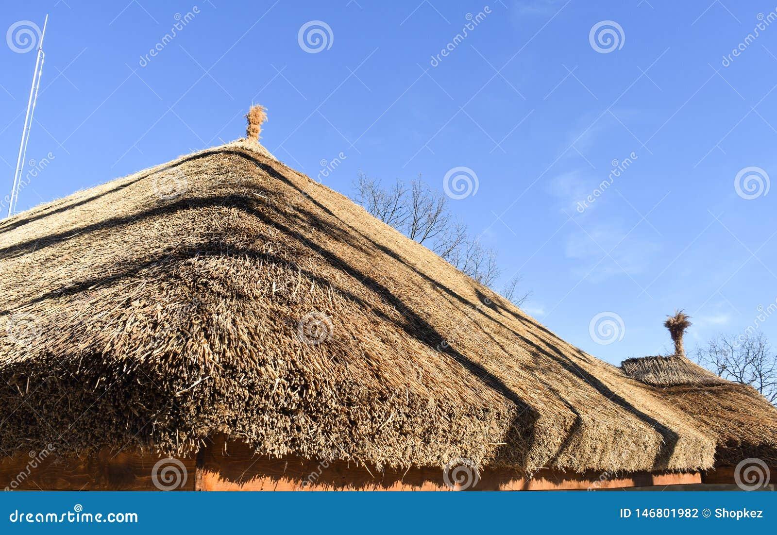 Tetto ricoperto di paglia africano tradizionale contro un cielo blu