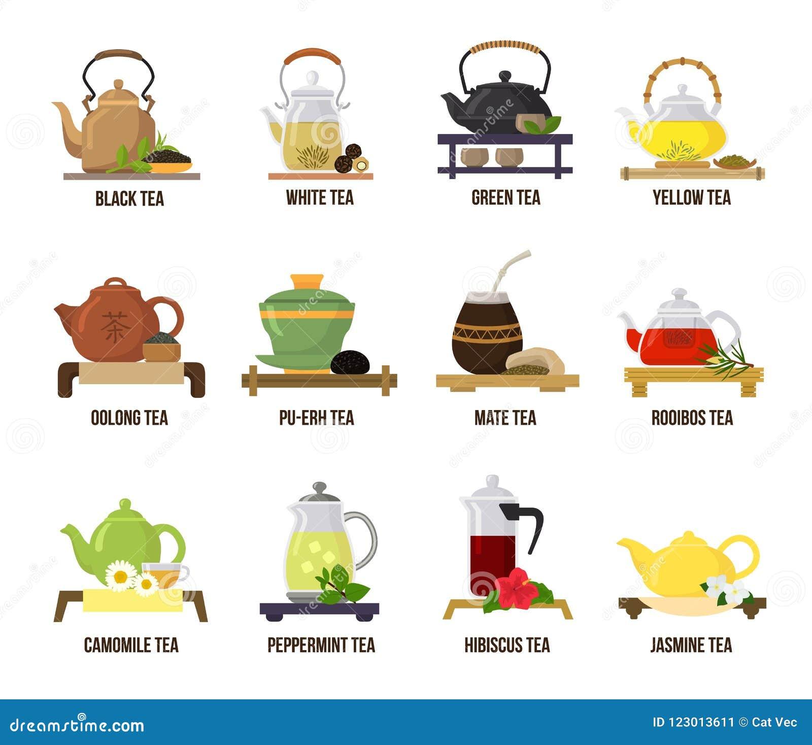 Tevektorgräsplan eller svart-te i tekannaillustration som in dricker uppsättningen av frukt- drinkar för jasmin och för rooibos p
