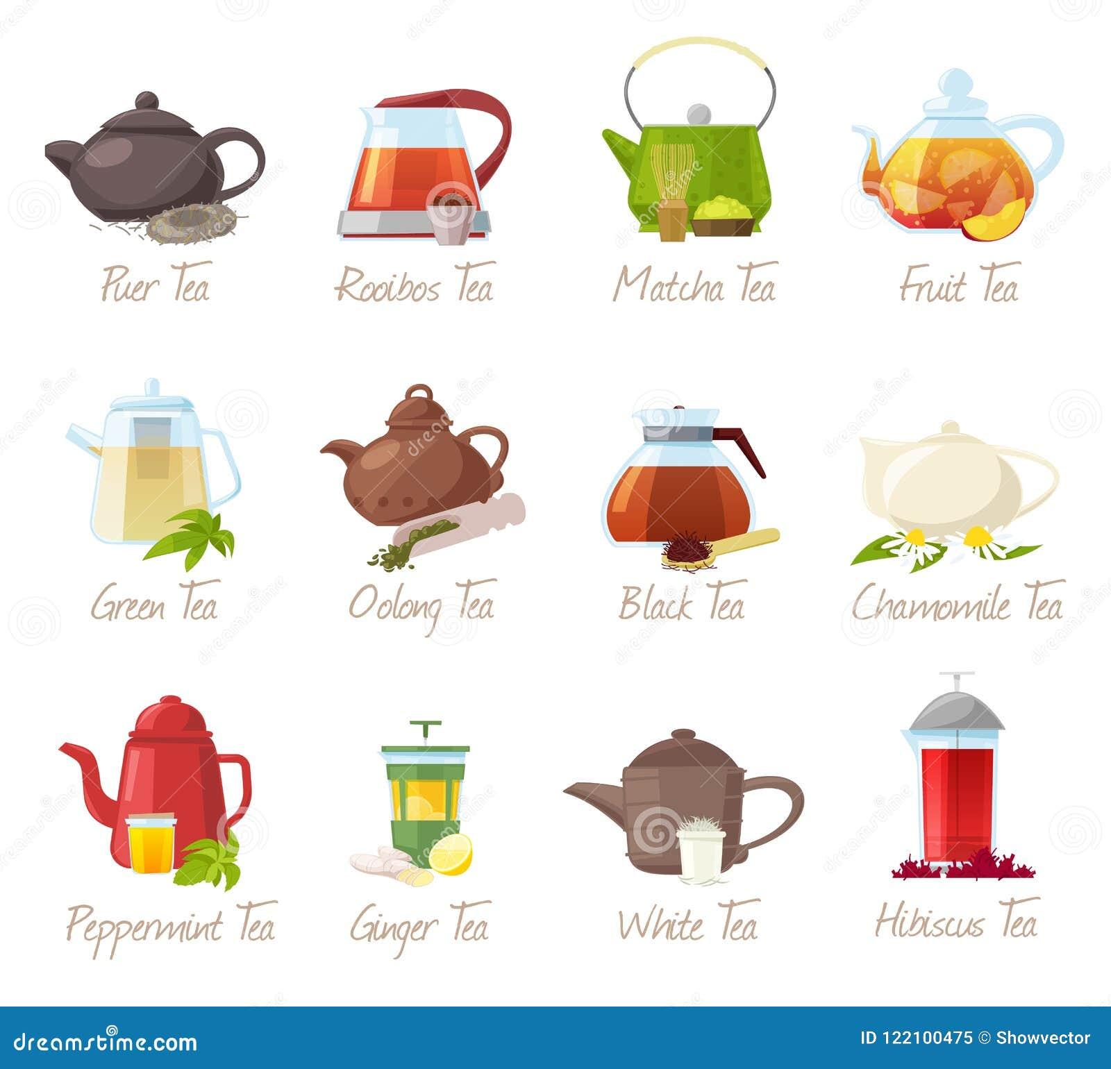 Tevektorpuer-te och rooibos eller frukt- drinkar för matcha i tekannaillustrationen som in dricker uppsättningen av grönt eller s