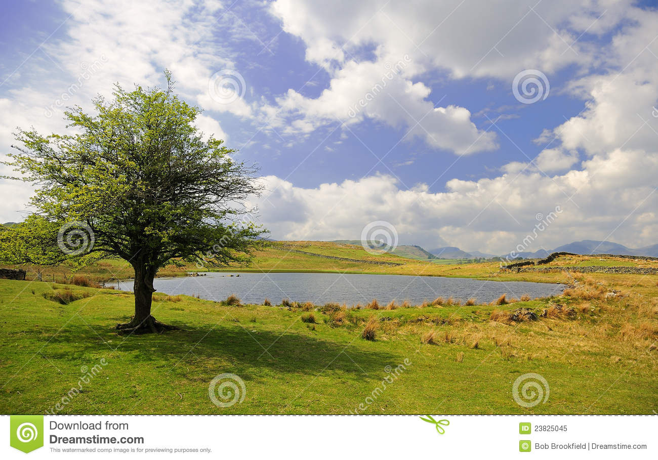 Tewet district du Tarn, lac, Angleterre
