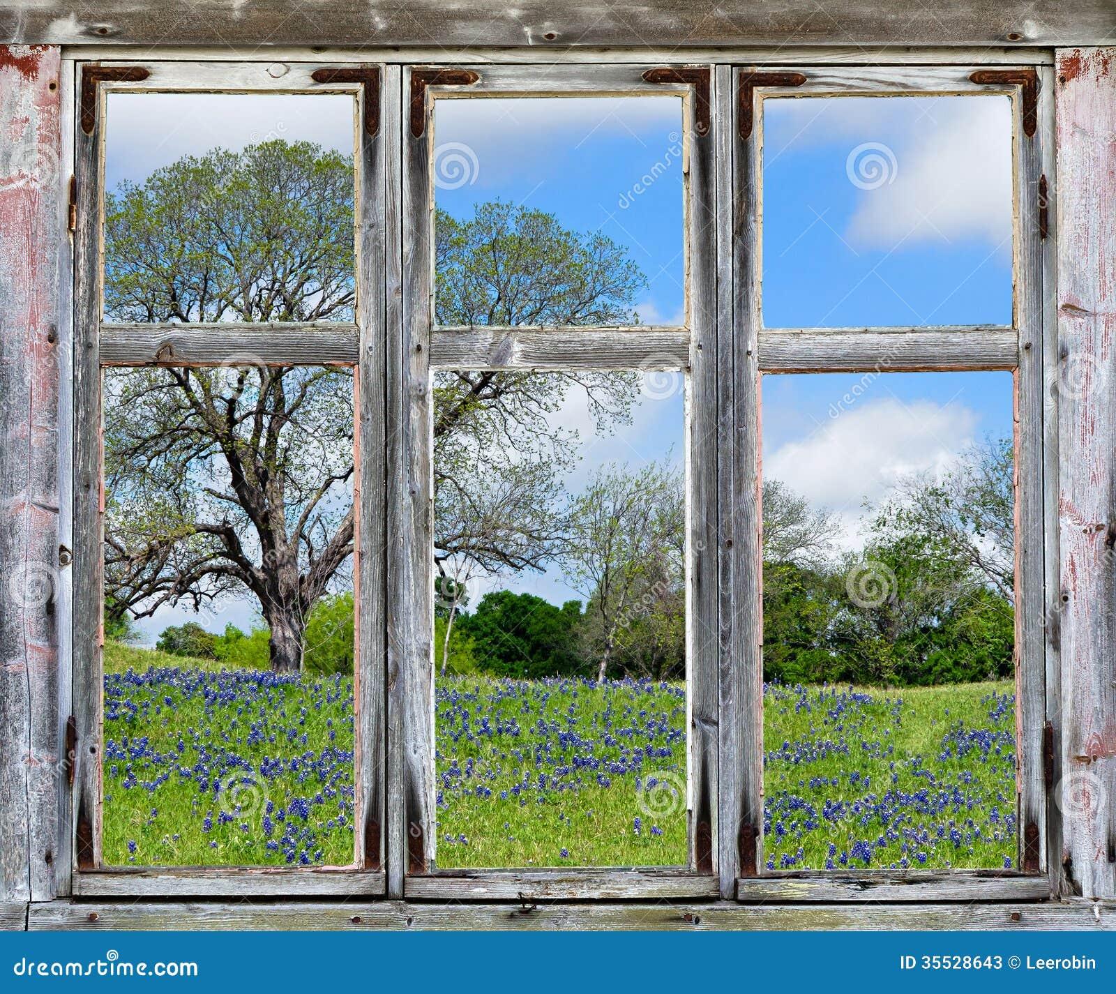 texas bluebonnetsaussicht durch einen alten fensterrahmen stockbild bild 35528643. Black Bedroom Furniture Sets. Home Design Ideas