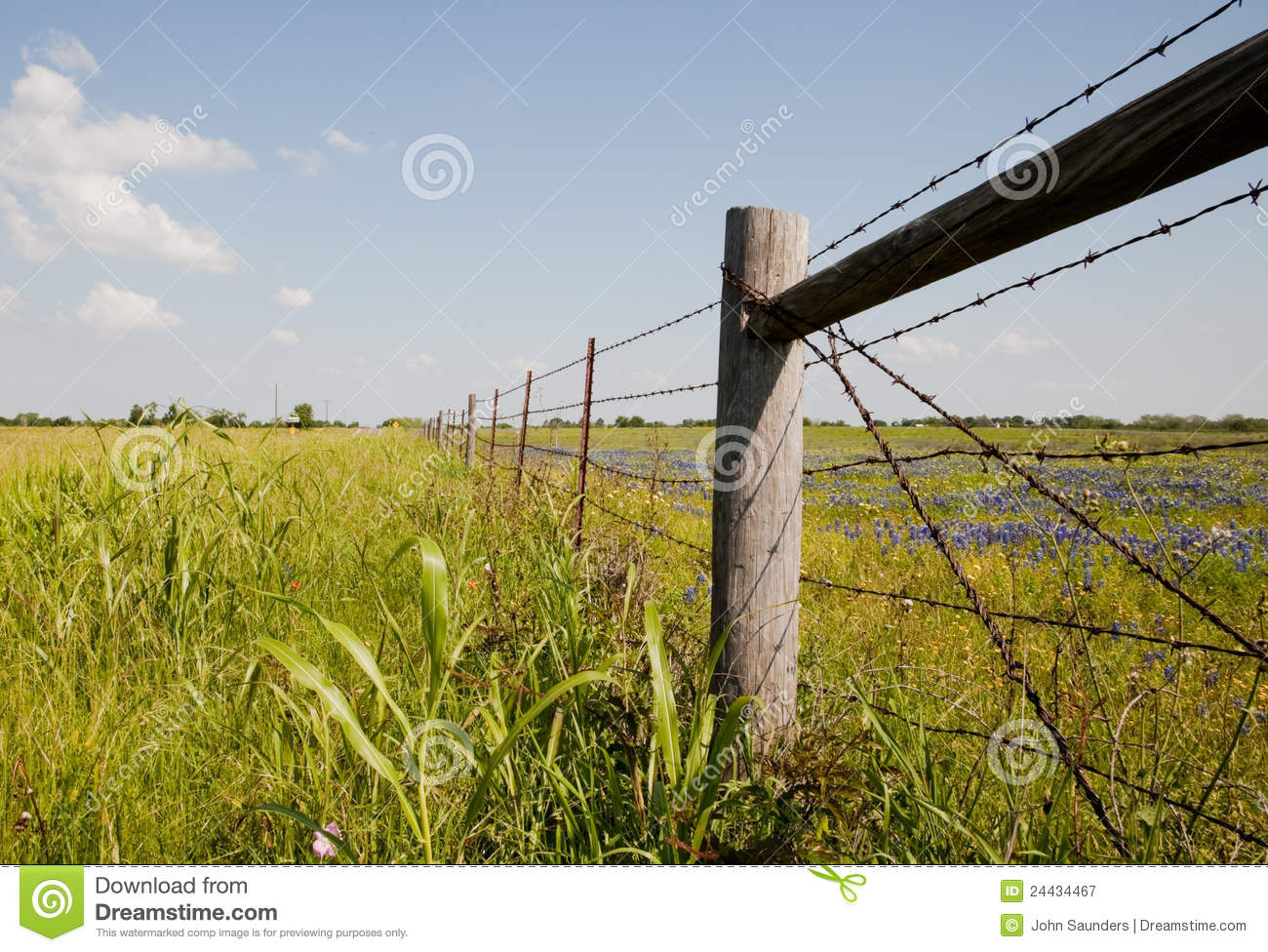 Texas countryside usa stock image image of wire grass Usa countryside pictures