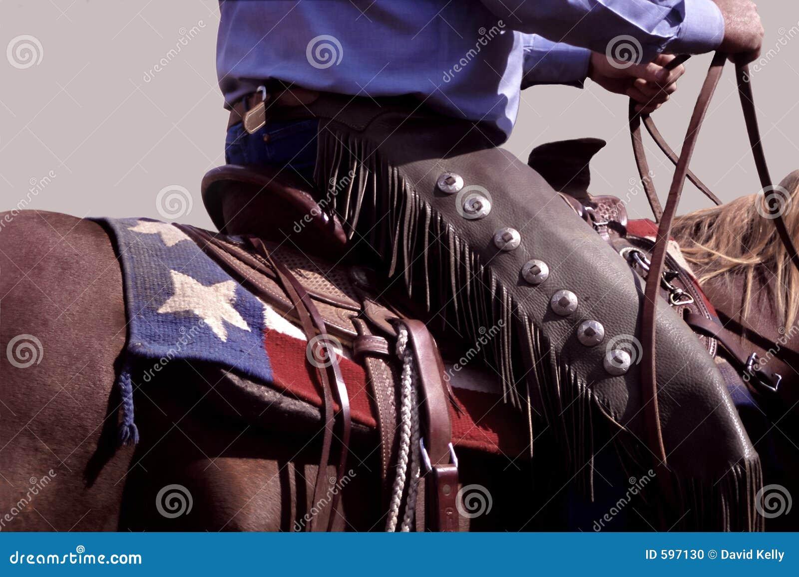 Texas Cowboy Stock Photo Image 597130