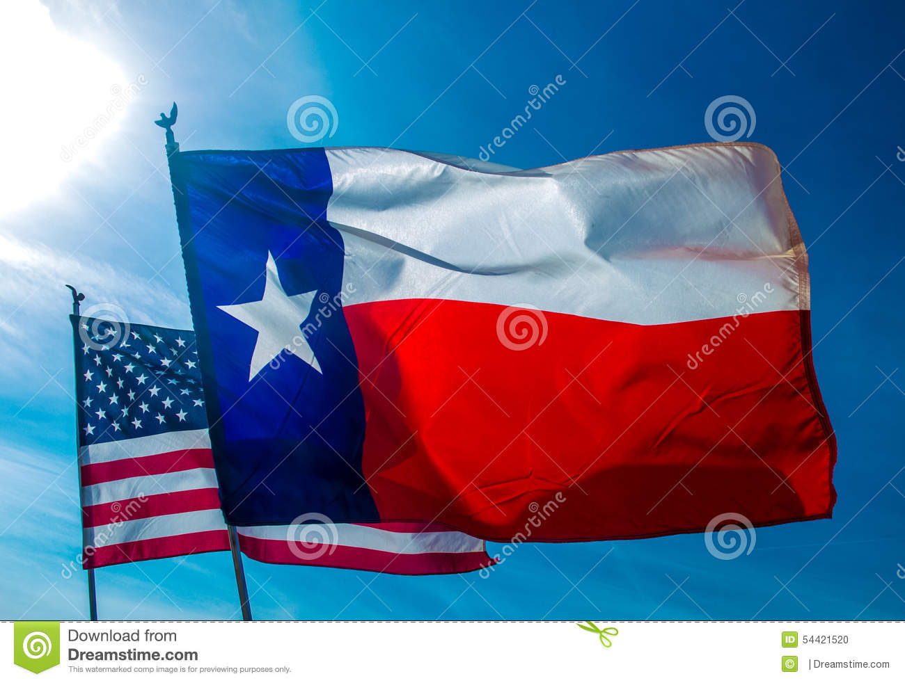 Texas Flag backed by American Flag