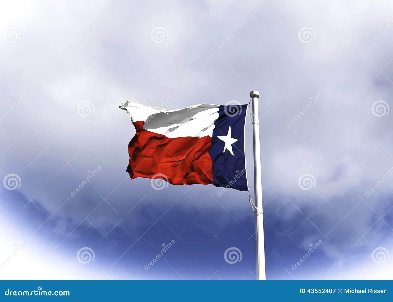 Texas Flag die in de Wind blazen