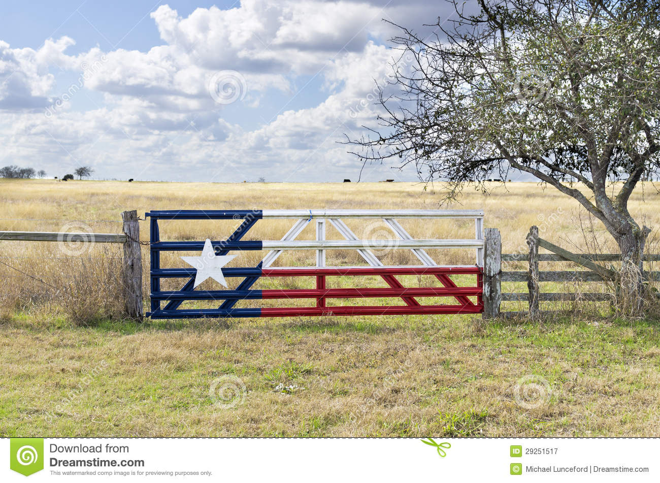 Painted Texas Flag on Cattle Gate