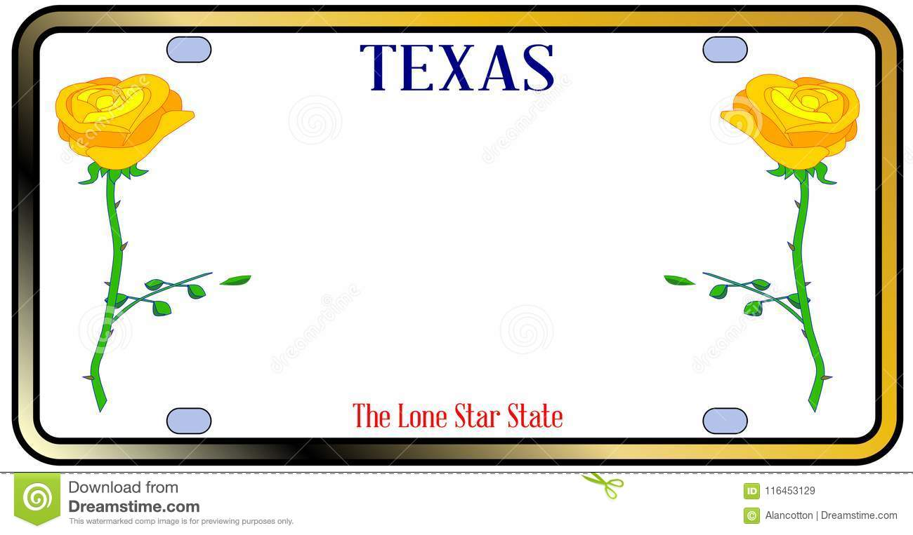 Texas Yellow Rose License Plate Stock Vector Illustration Of