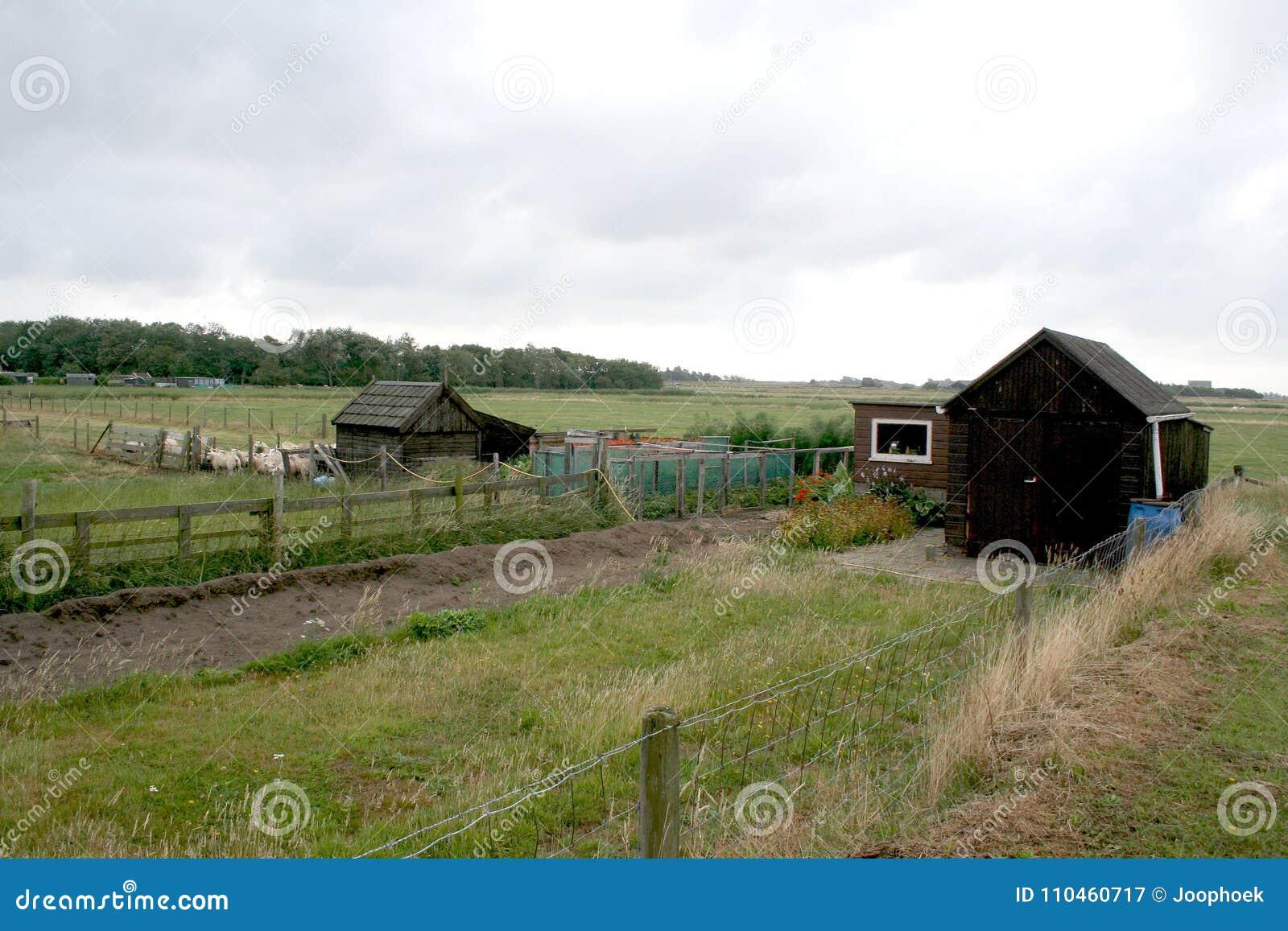 Texel jordbruks- landskap