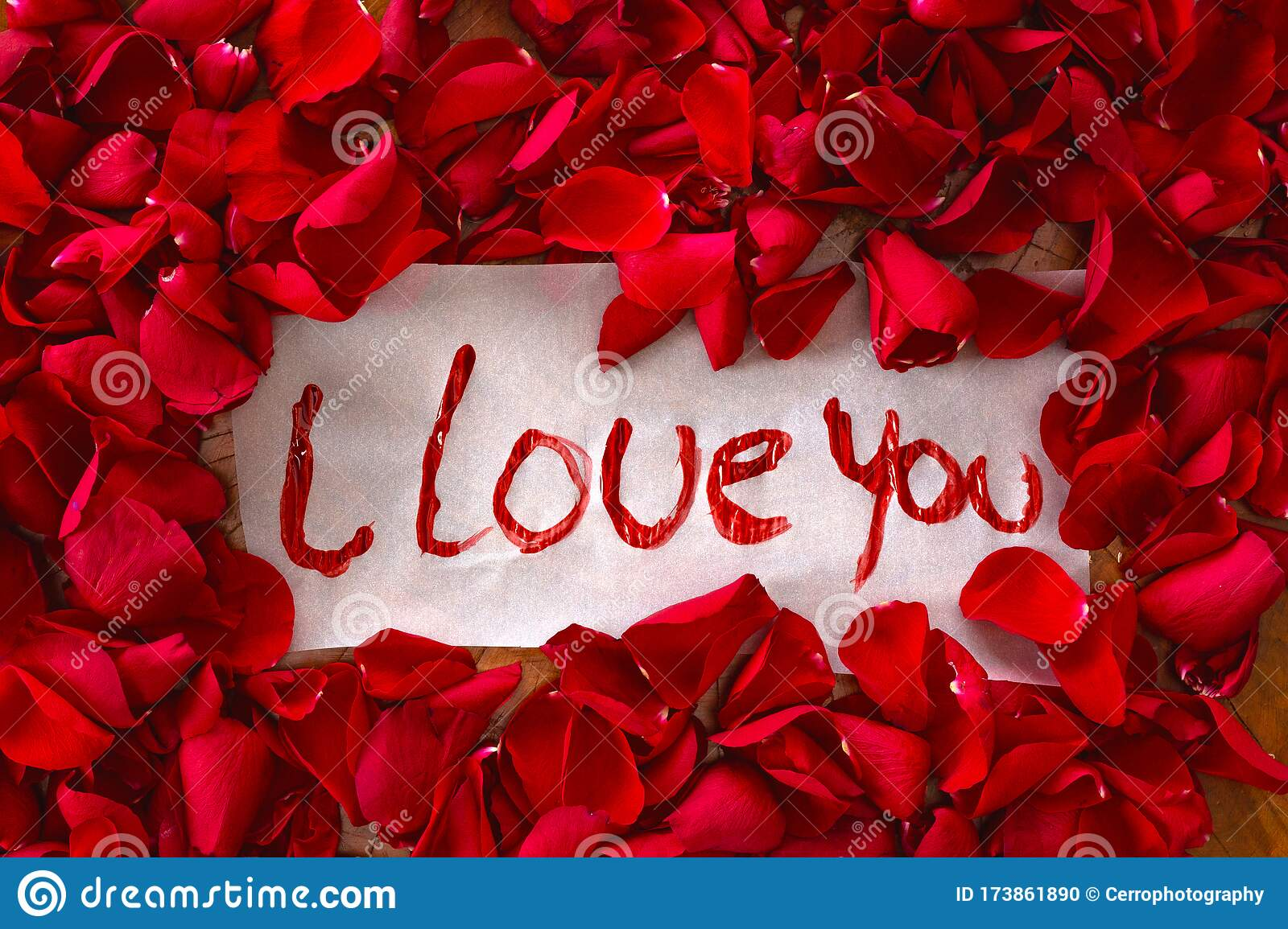 1 537 i love you rose photos free royalty free stock photos from dreamstime https www dreamstime com text i love you surrounded red rose petals romantic concept top view valentines background beauty image173861890