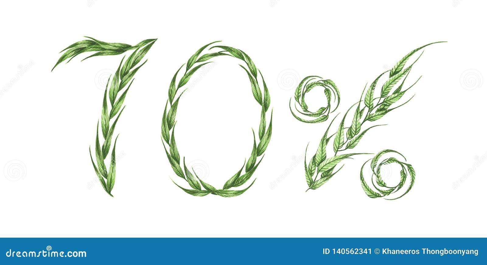 70  text, sjuttio procent från gröna sidor för flygillustration för näbb dekorativ bild dess paper stycksvalavattenfärg