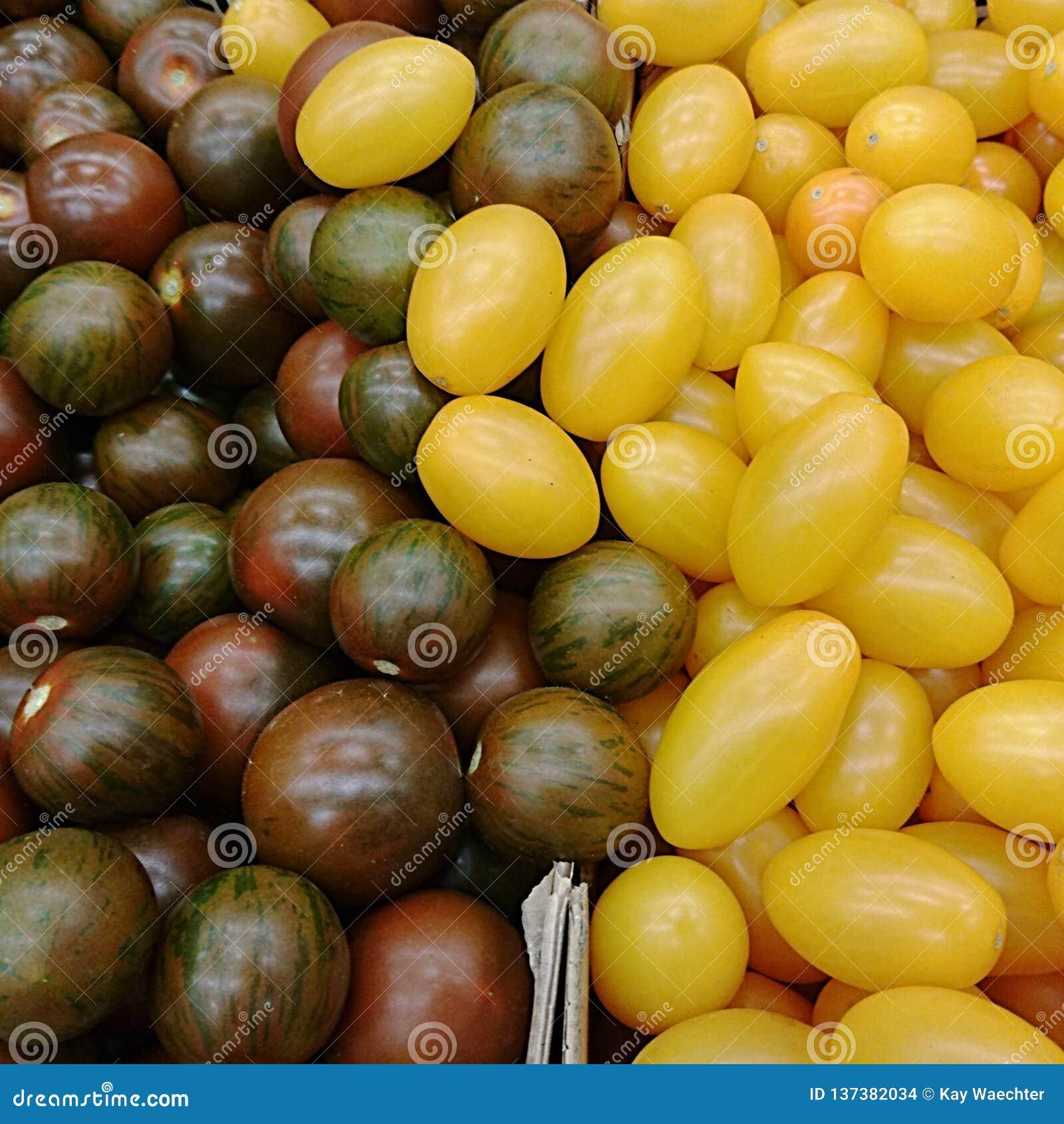 Textur av purpurfärgade och gula Cherrytomatoes