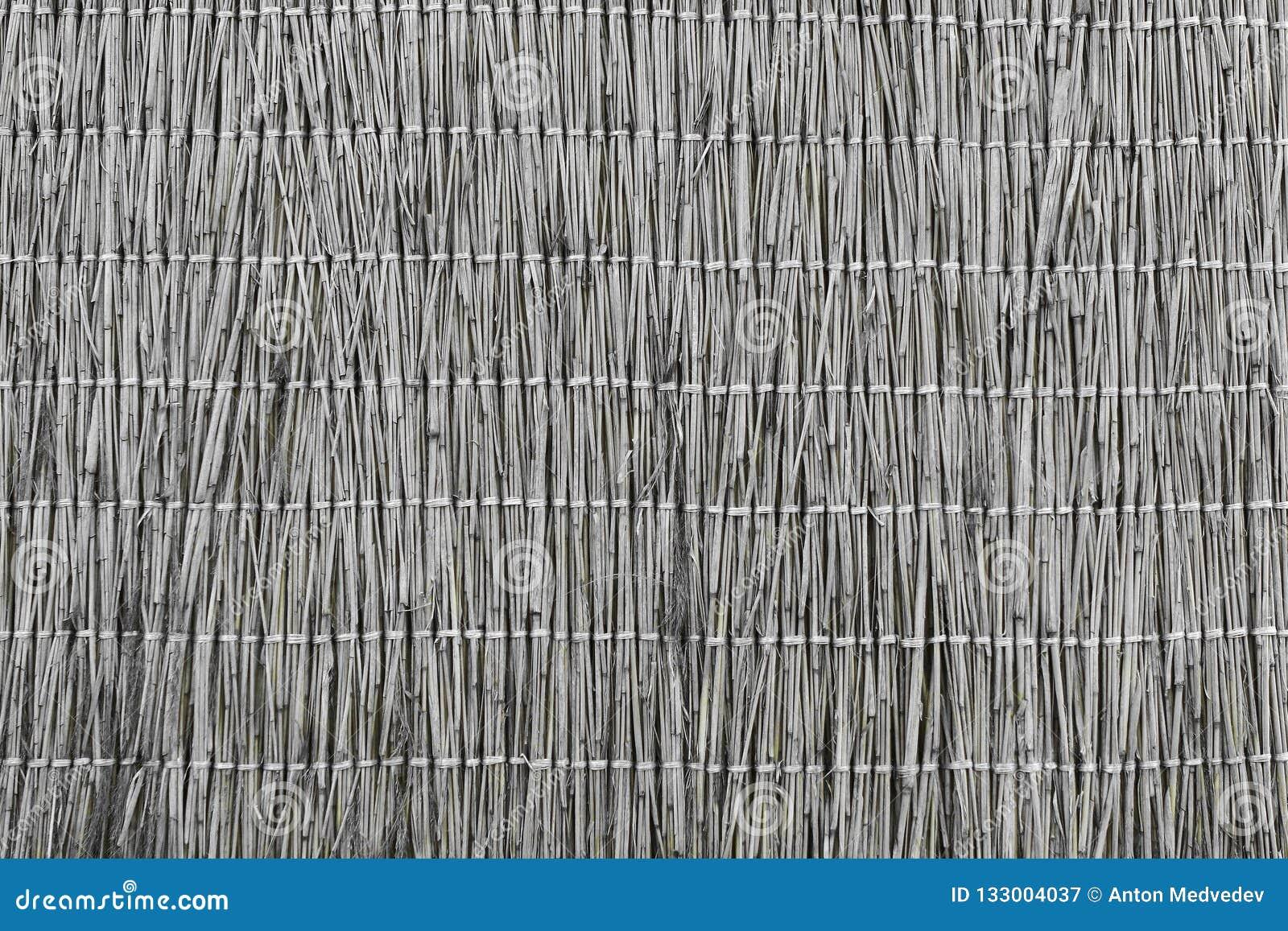Textur för designrottingstaket - nätt abstrakt fotobakgrund