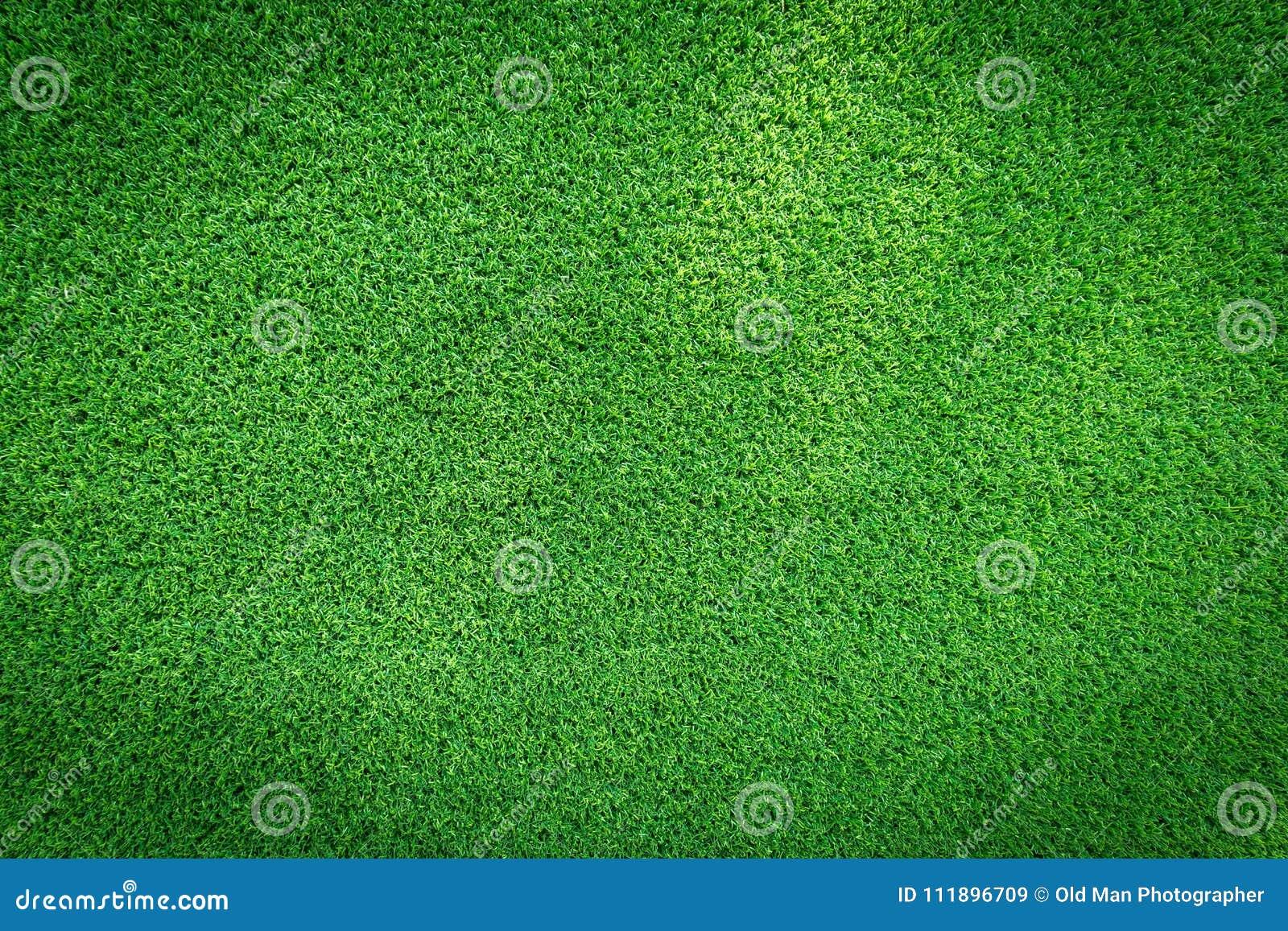 Textur för gräsfält för golfbana, fotbollfält eller design för sportbakgrundsbegrepp