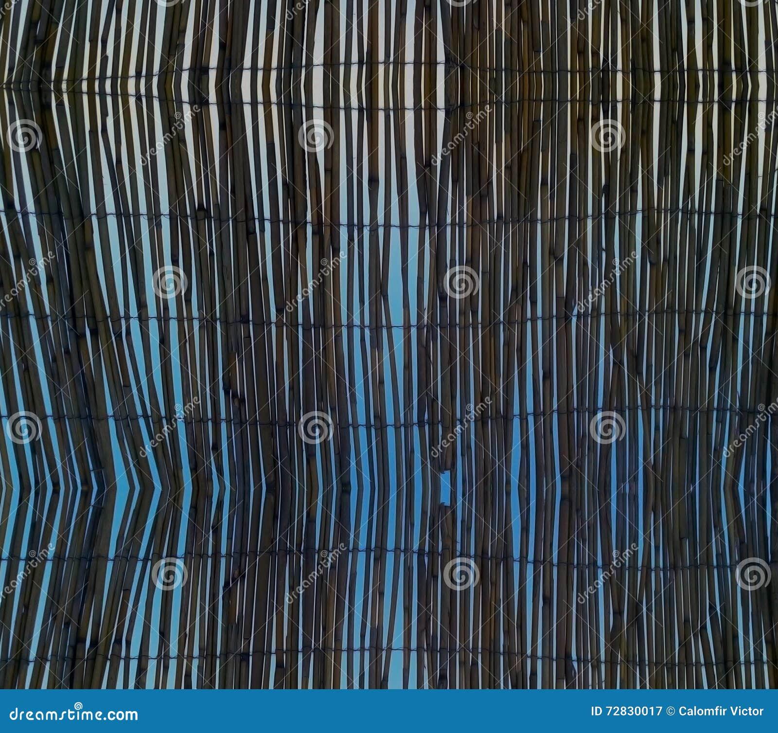 Textura abstrata do fundo da natureza - detalhe da planta