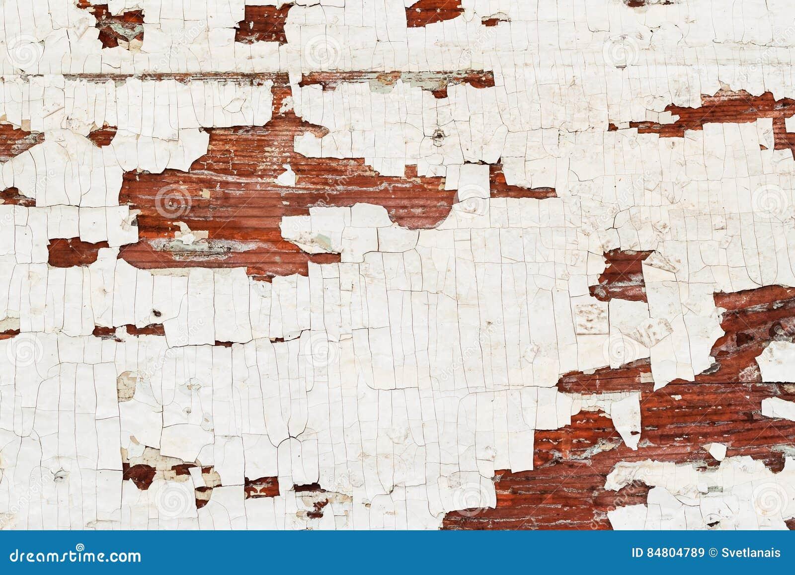 Textura com superfície de madeira da pintura da casca, fundo envelhecido velho Lugar para seu texto