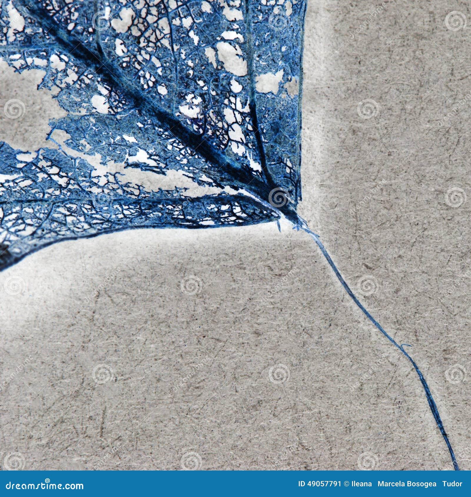 Textura con las hojas putrefactas con las fibras