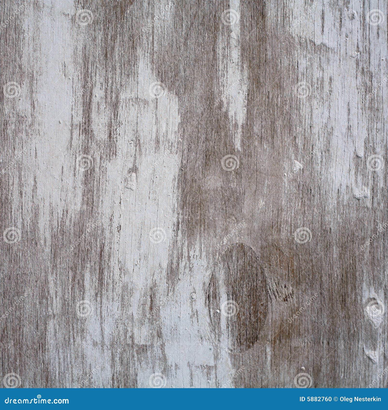 Textura da História de madeira