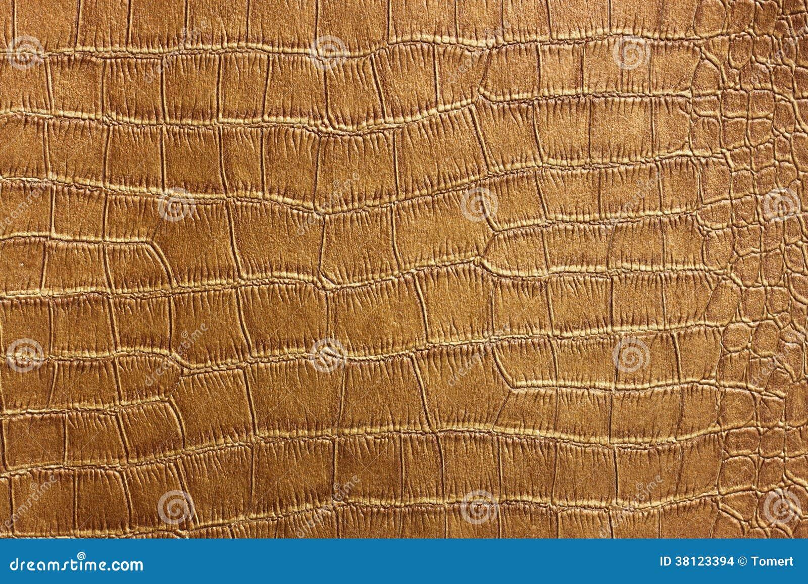 Textura da pele do crocodilo e teste padrão dourados, close up