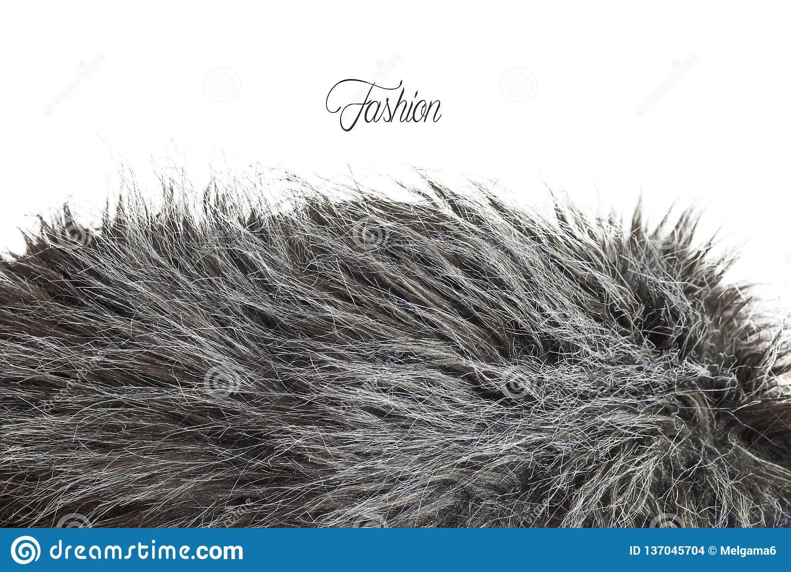 Textura da pele em greyscale - modo da forma
