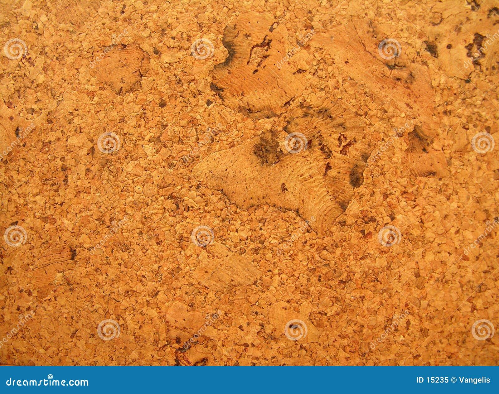 Textura da placa da cortiça