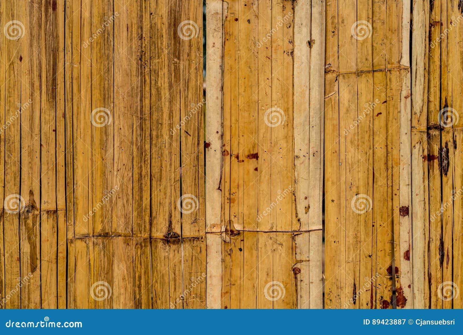 Textura de bambu da casca
