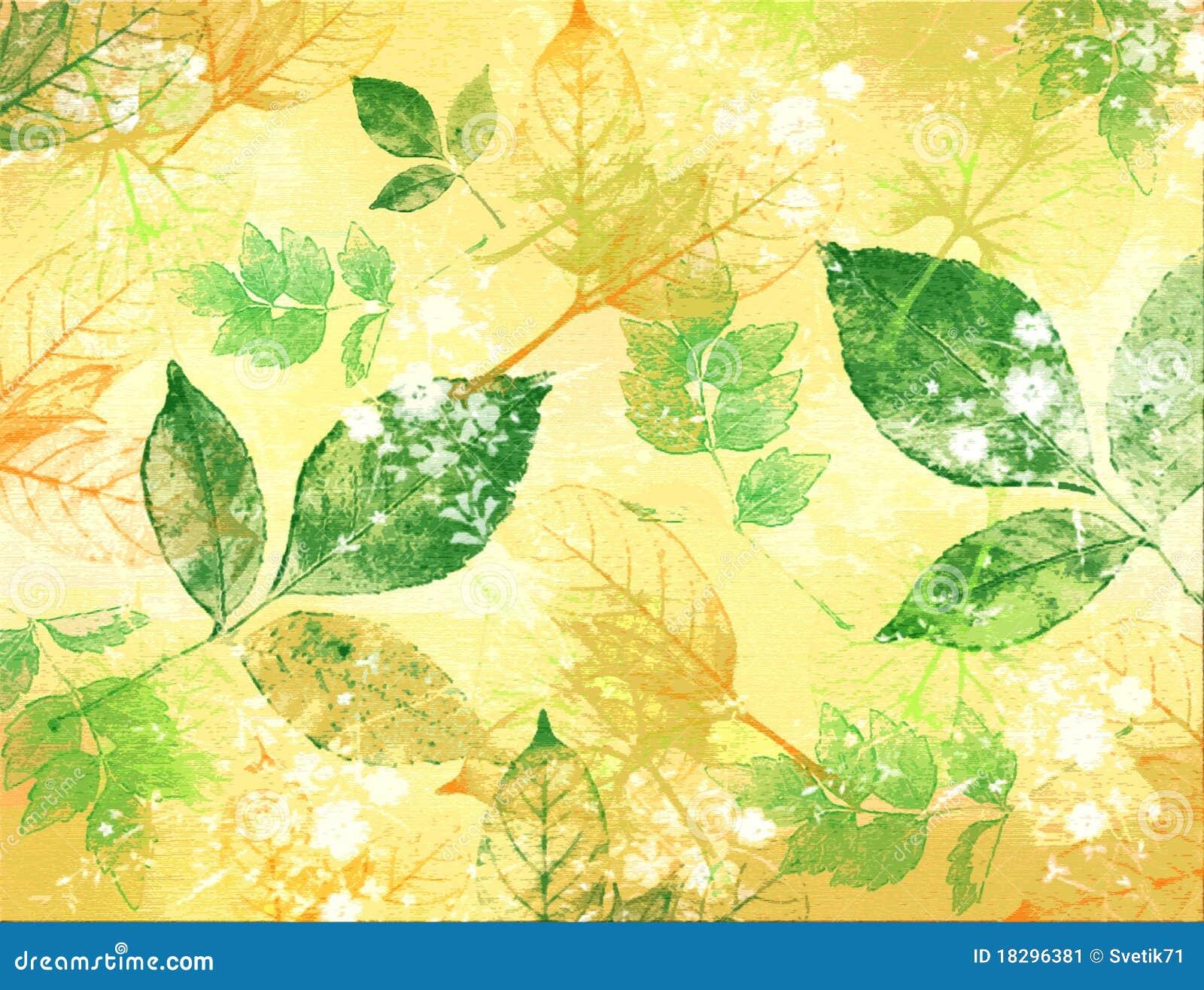 Textura de hojas del color verde y amarillo imagen de - Color verde hoja ...