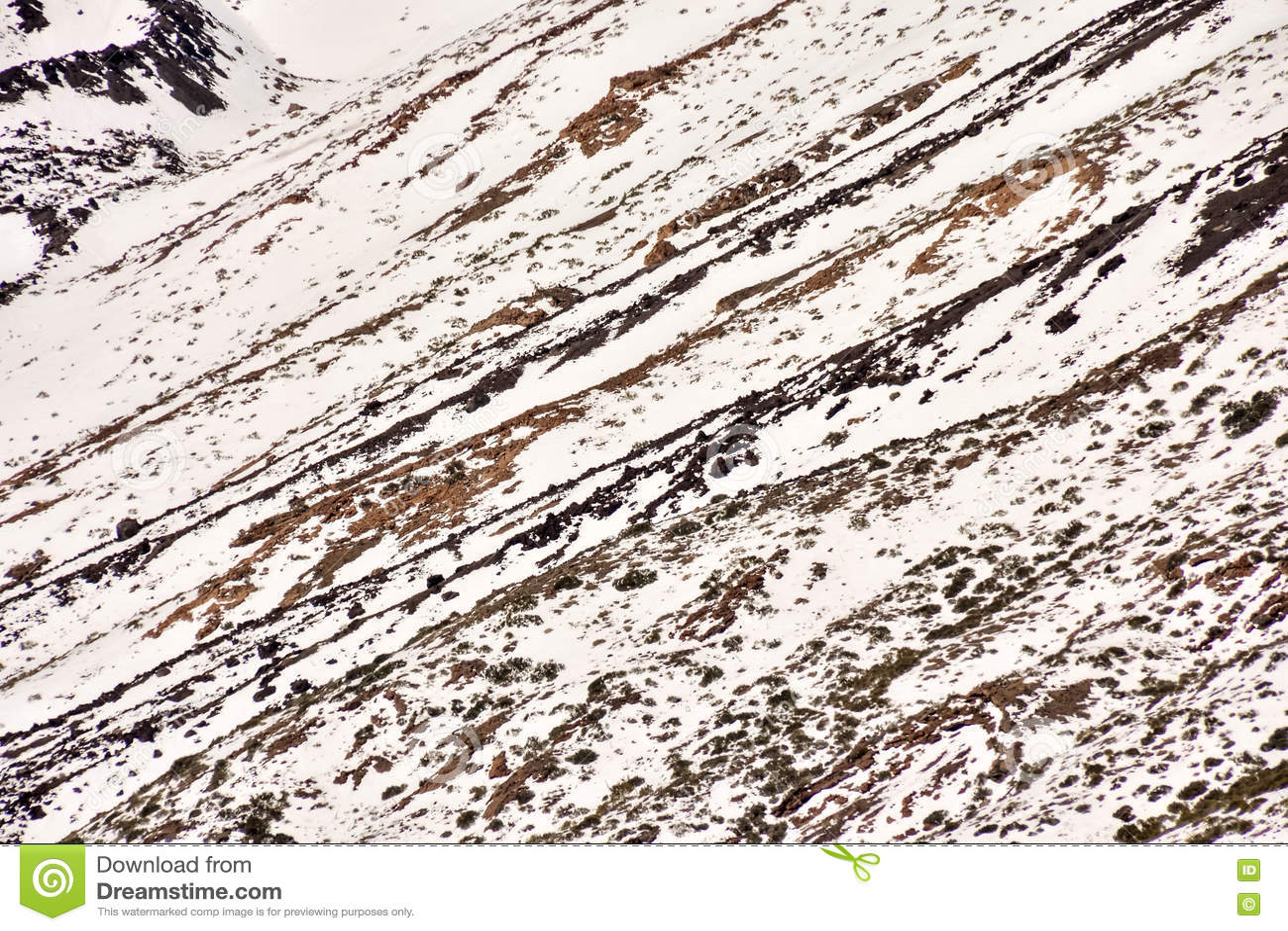 Textura de la nieve para el fondo