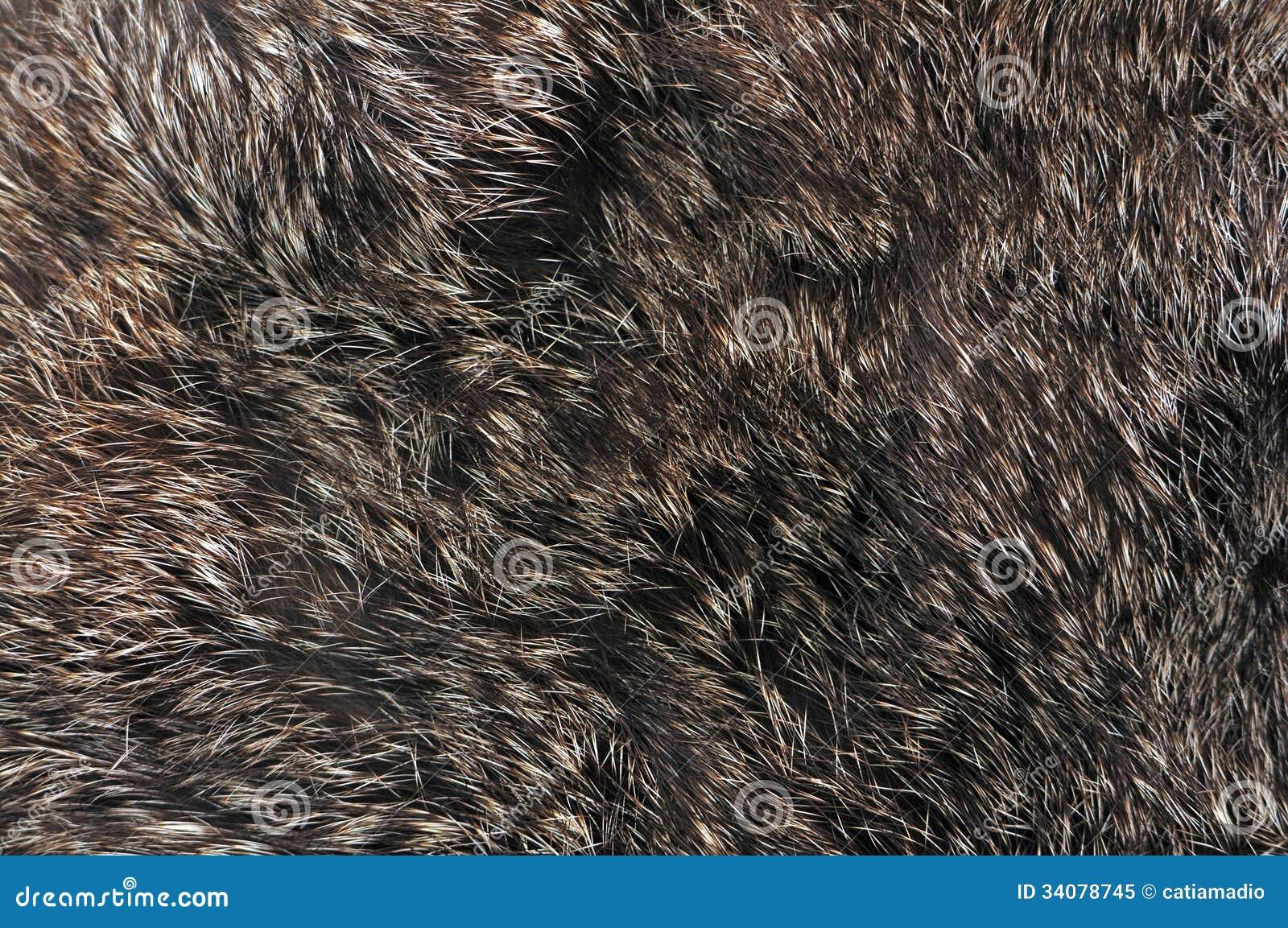 Textura de la piel de Brown