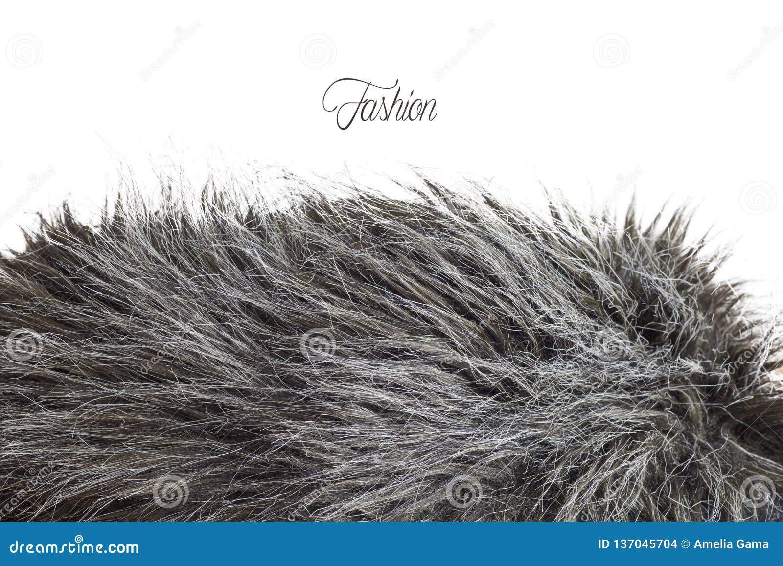 Textura de la piel en greyscale - modo de la moda