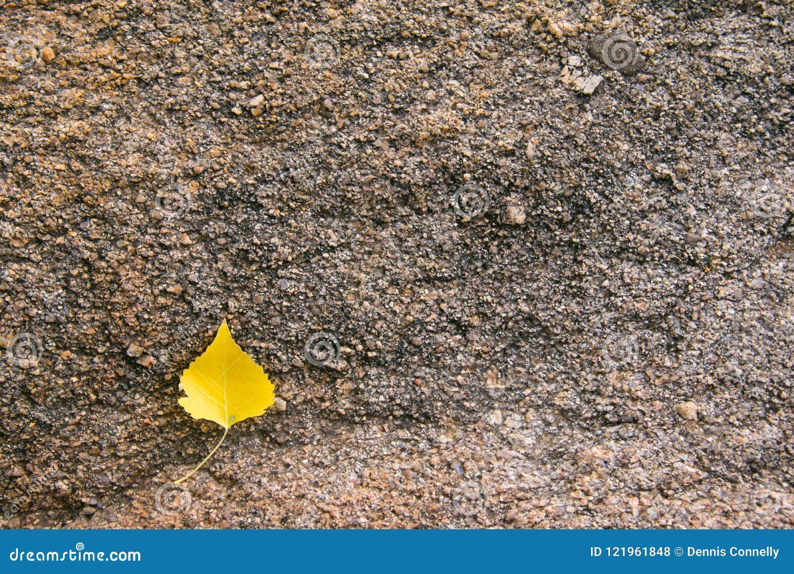 Textura de la roca del granito con la hoja